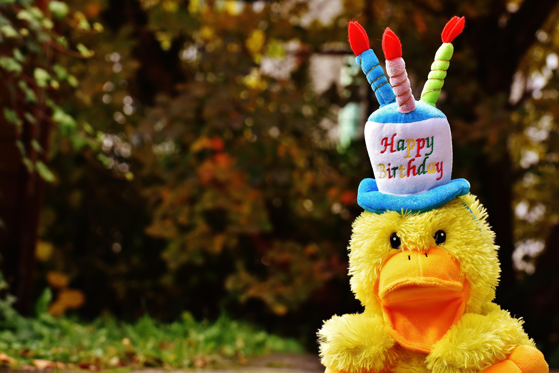 Картинка с днем рождения с утенком