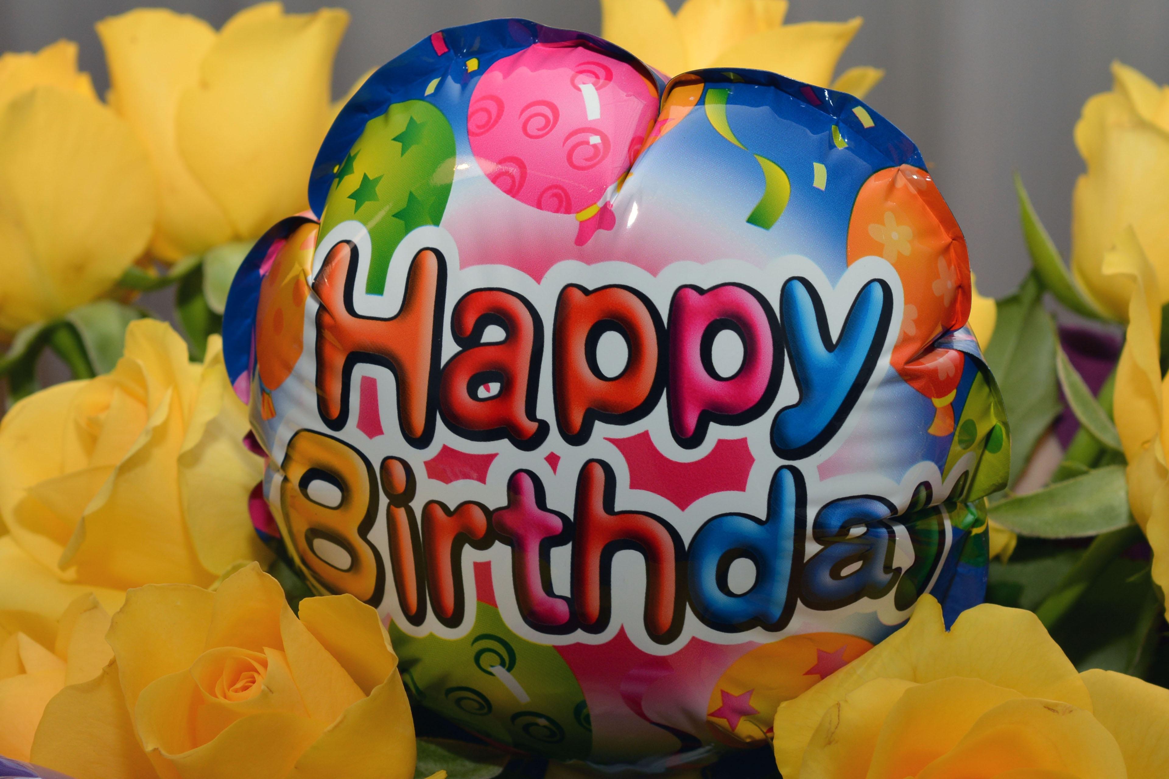 grappige afbeeldingen gefeliciteerd Gratis Afbeeldingen : bloem, ballon, viering, eten, kleur  grappige afbeeldingen gefeliciteerd