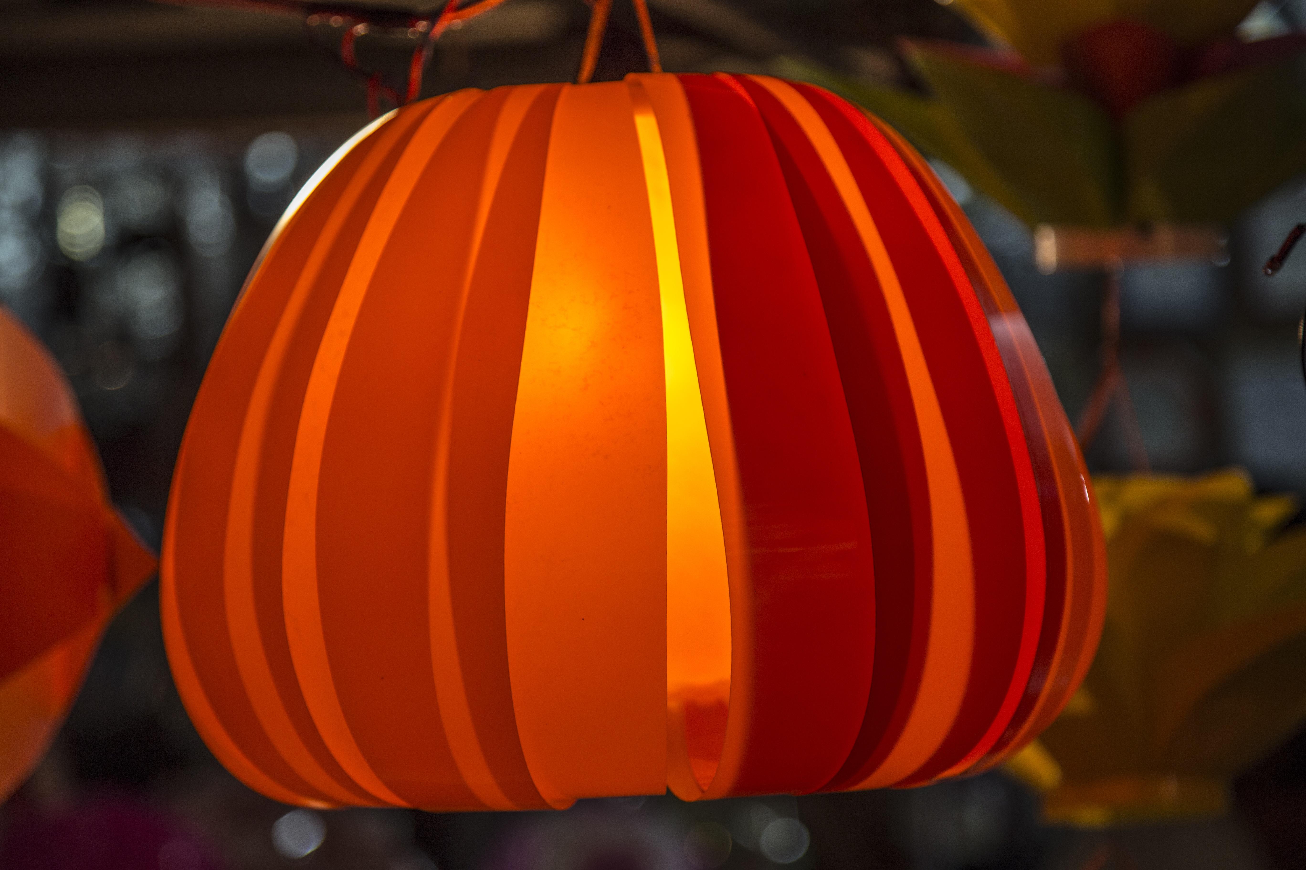 Free Images : flower, celebration, decoration, red, color, autumn ...