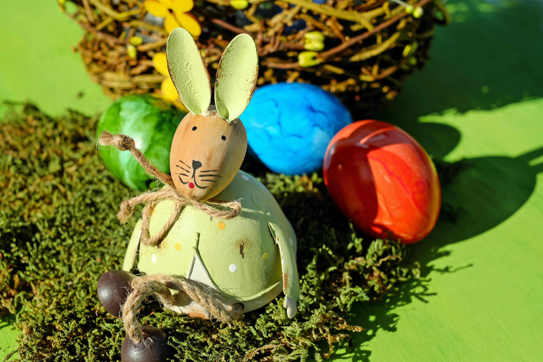 gratis afbeeldingen   bloem  schattig  mos  eten  groen  zittend  haas  figuur  pasen  paashaas