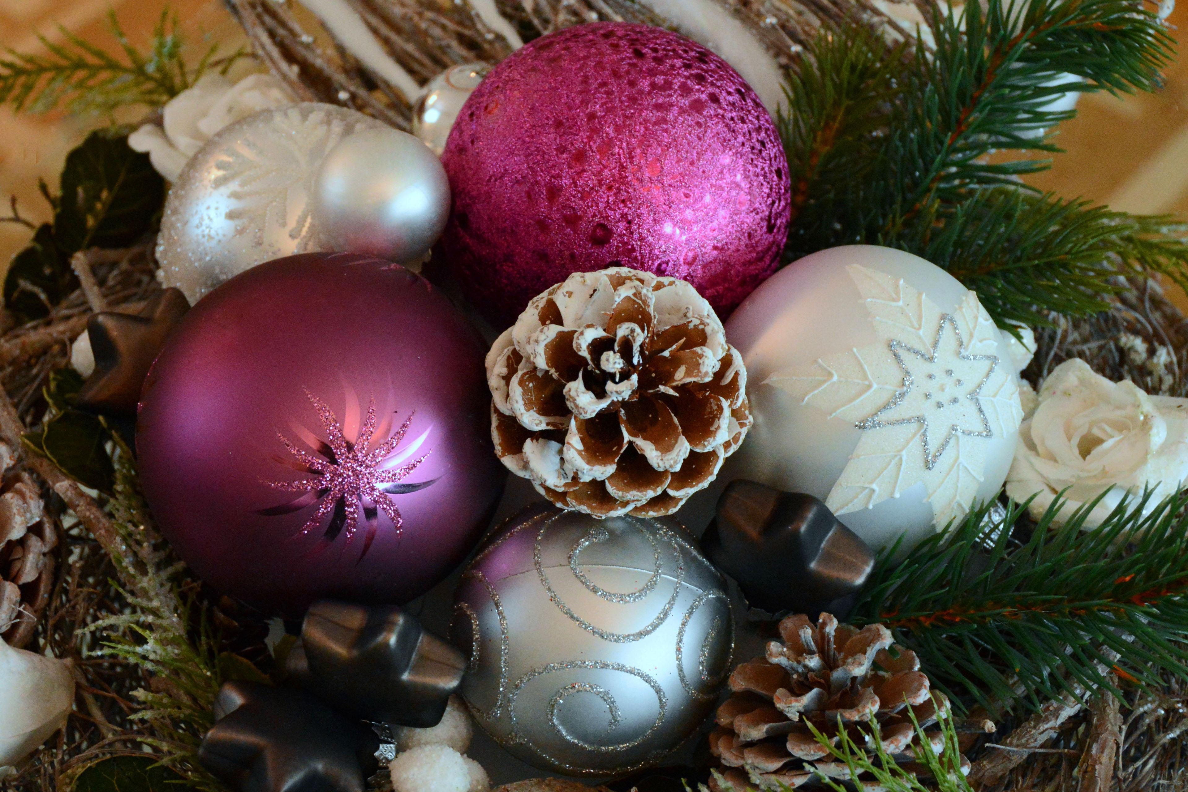 Gratis afbeeldingen bloem vakantie roze kerstmis for Decoratie zilver