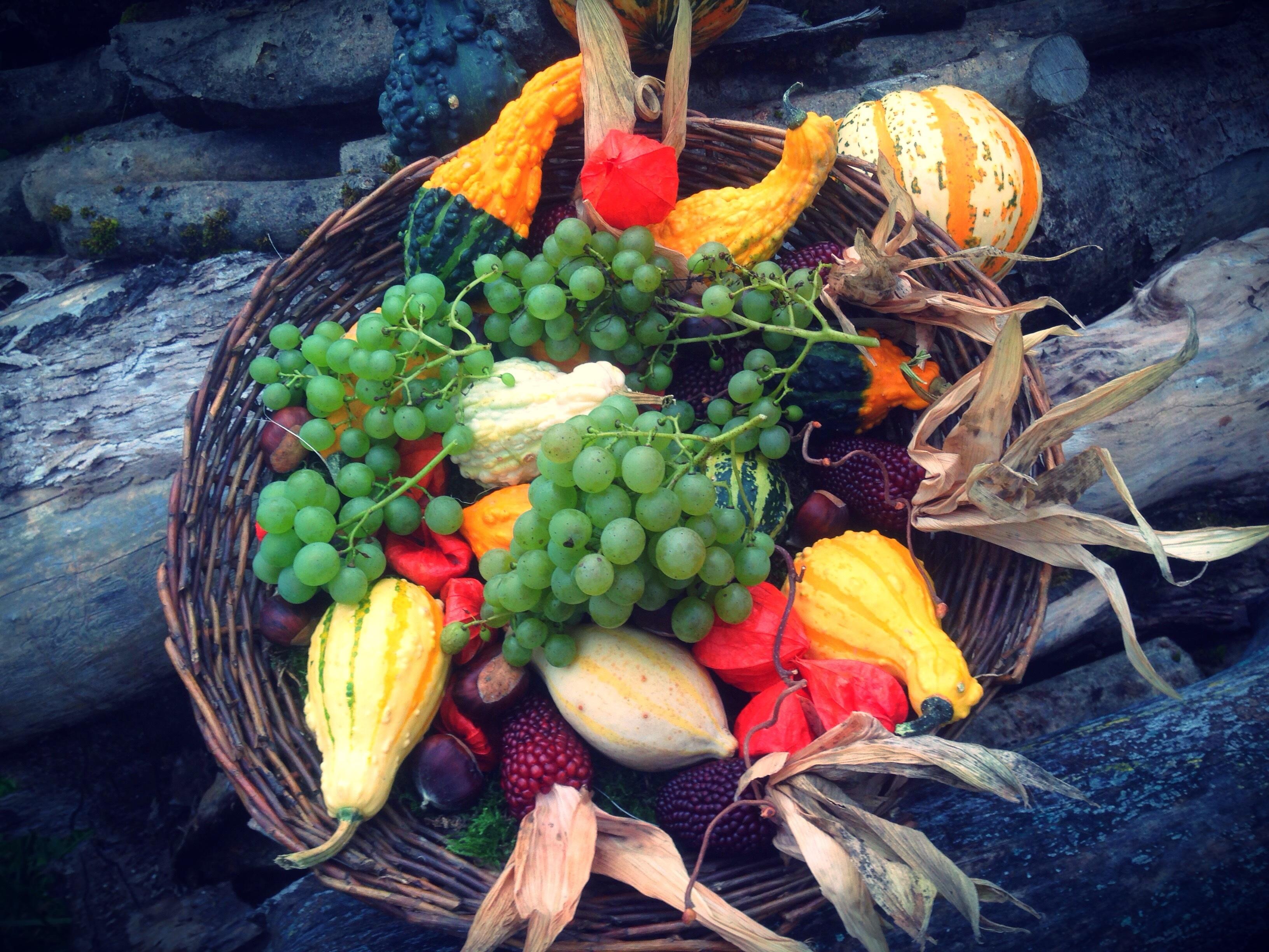 Kostenlose foto : Blume, Gericht, Lebensmittel, produzieren, Gemüse ...