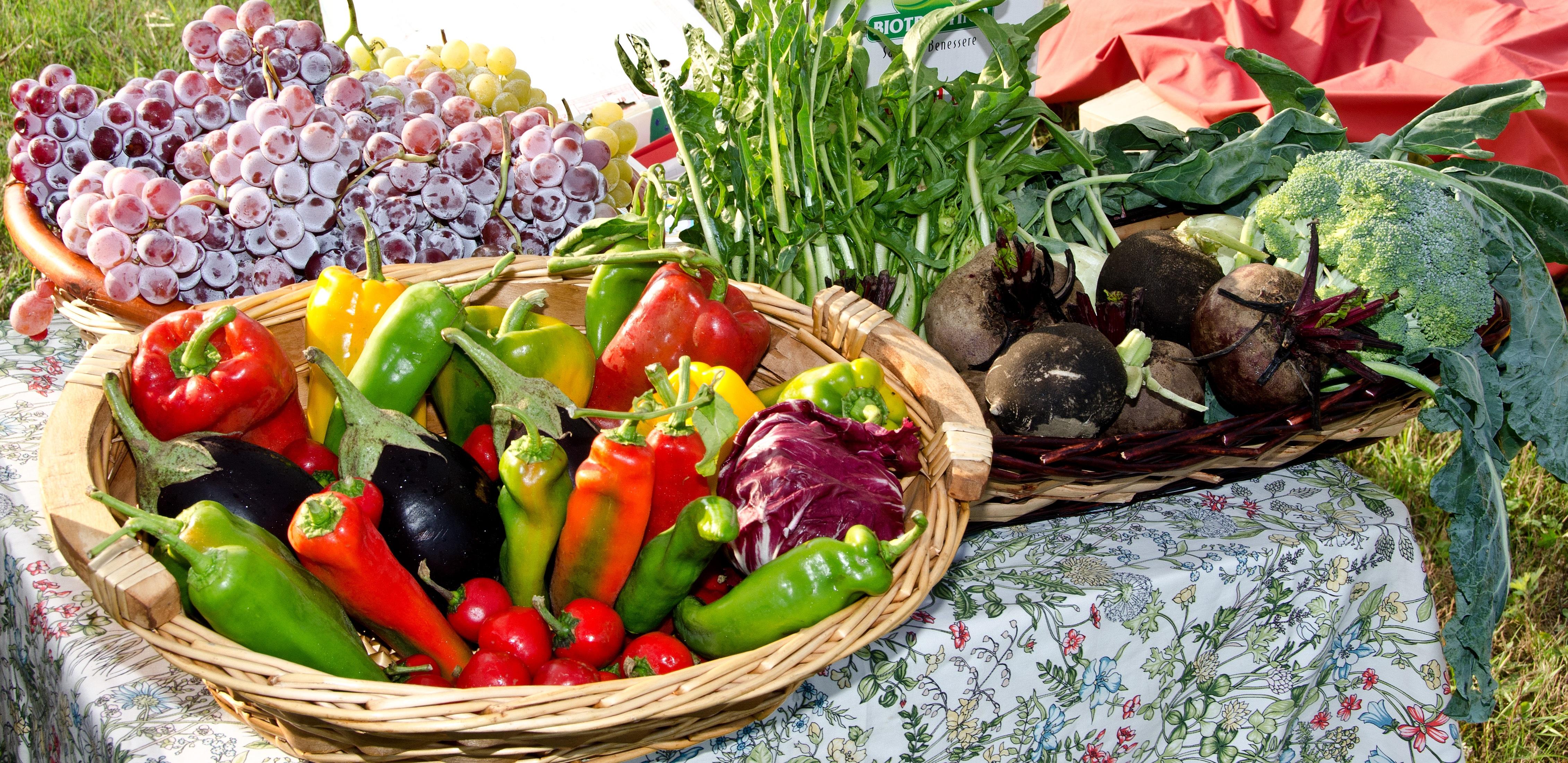 Images Gratuites Fleur Plat Repas Aliments Produire