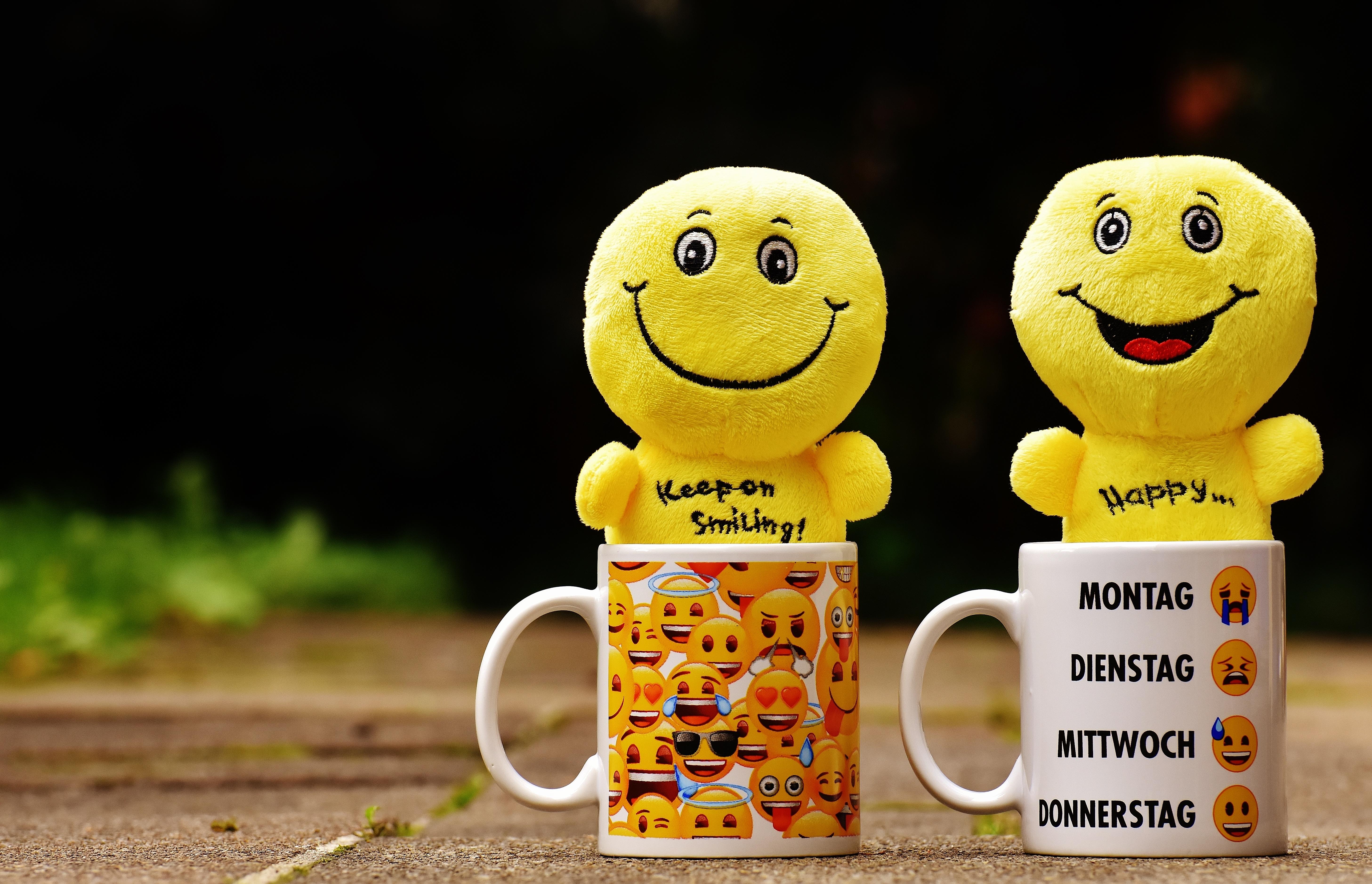 Smile Toys And Joys : Fotos gratis flor comida color amarillo juguete