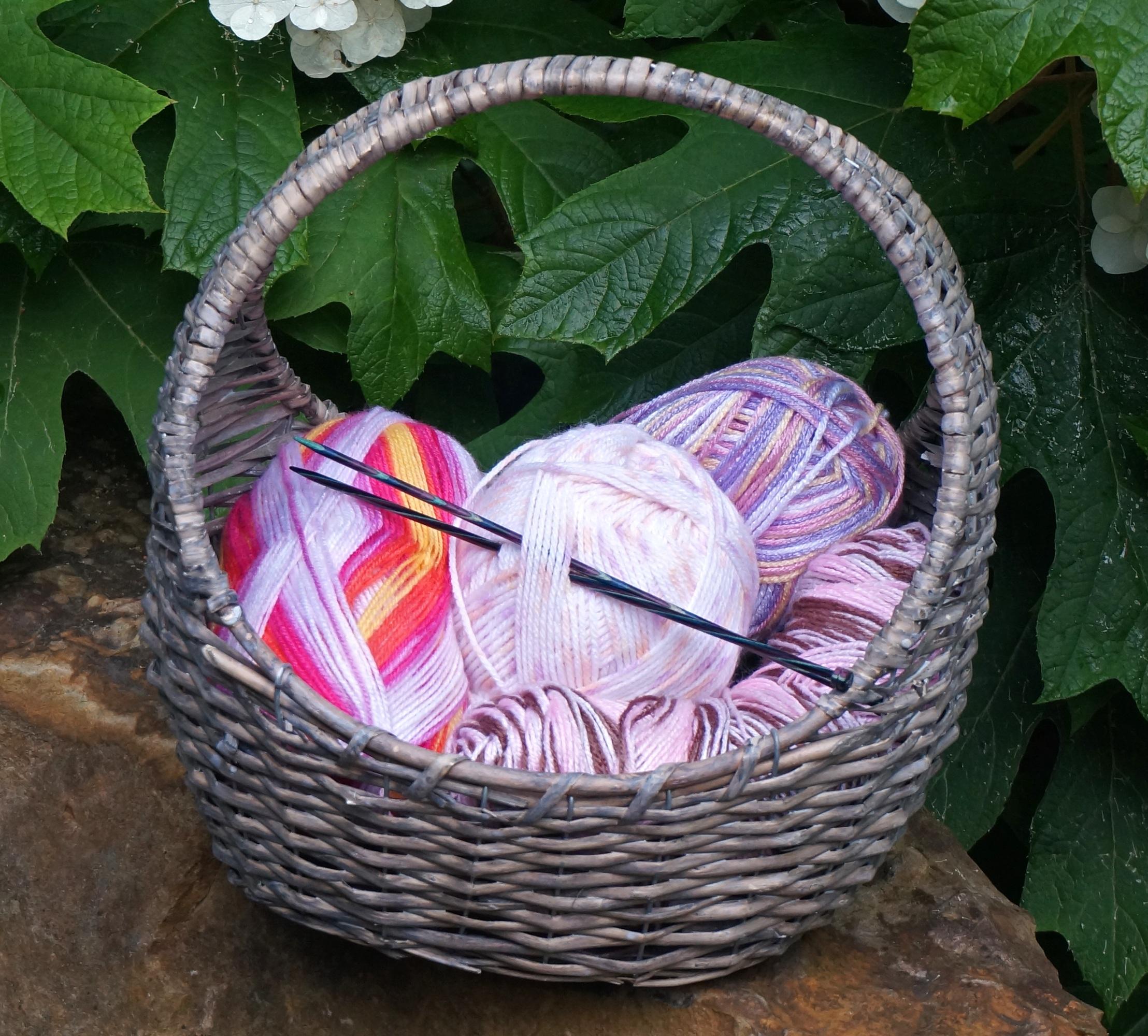Fotos gratis : flor, comida, Produce, arte, vistoso, jardín, cesta ...