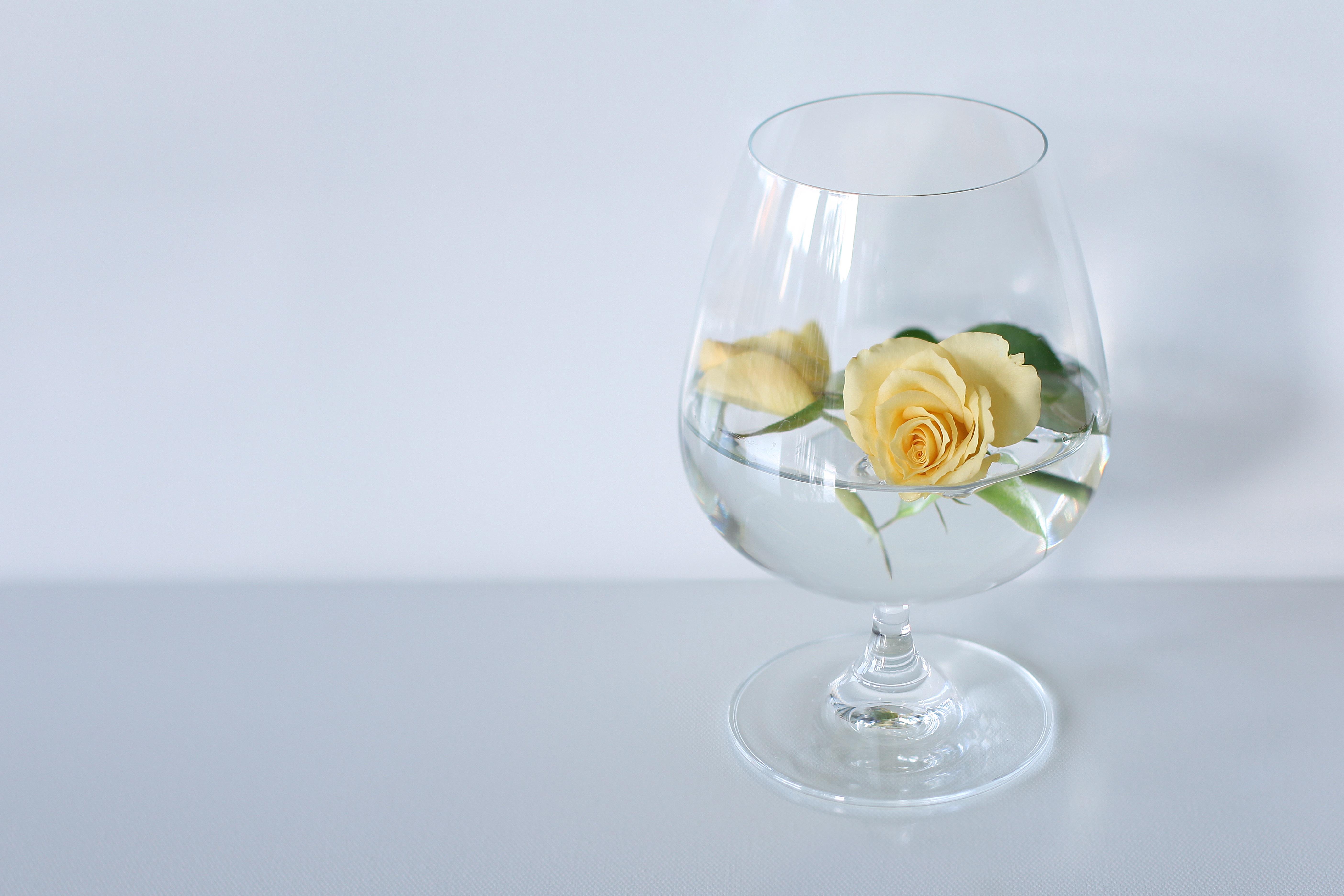 Картинки цветов в бокале