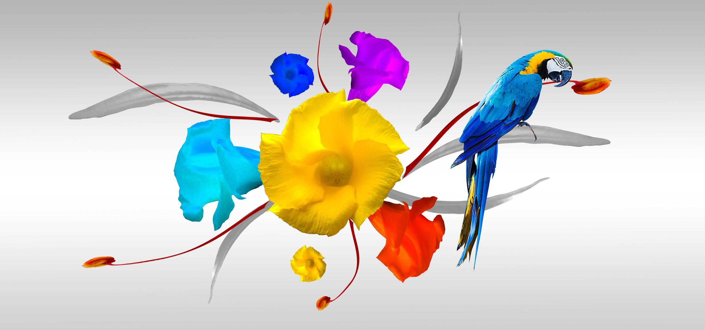 Papier Peint Avec Perroquet images gratuites : fleur, illustration, conception