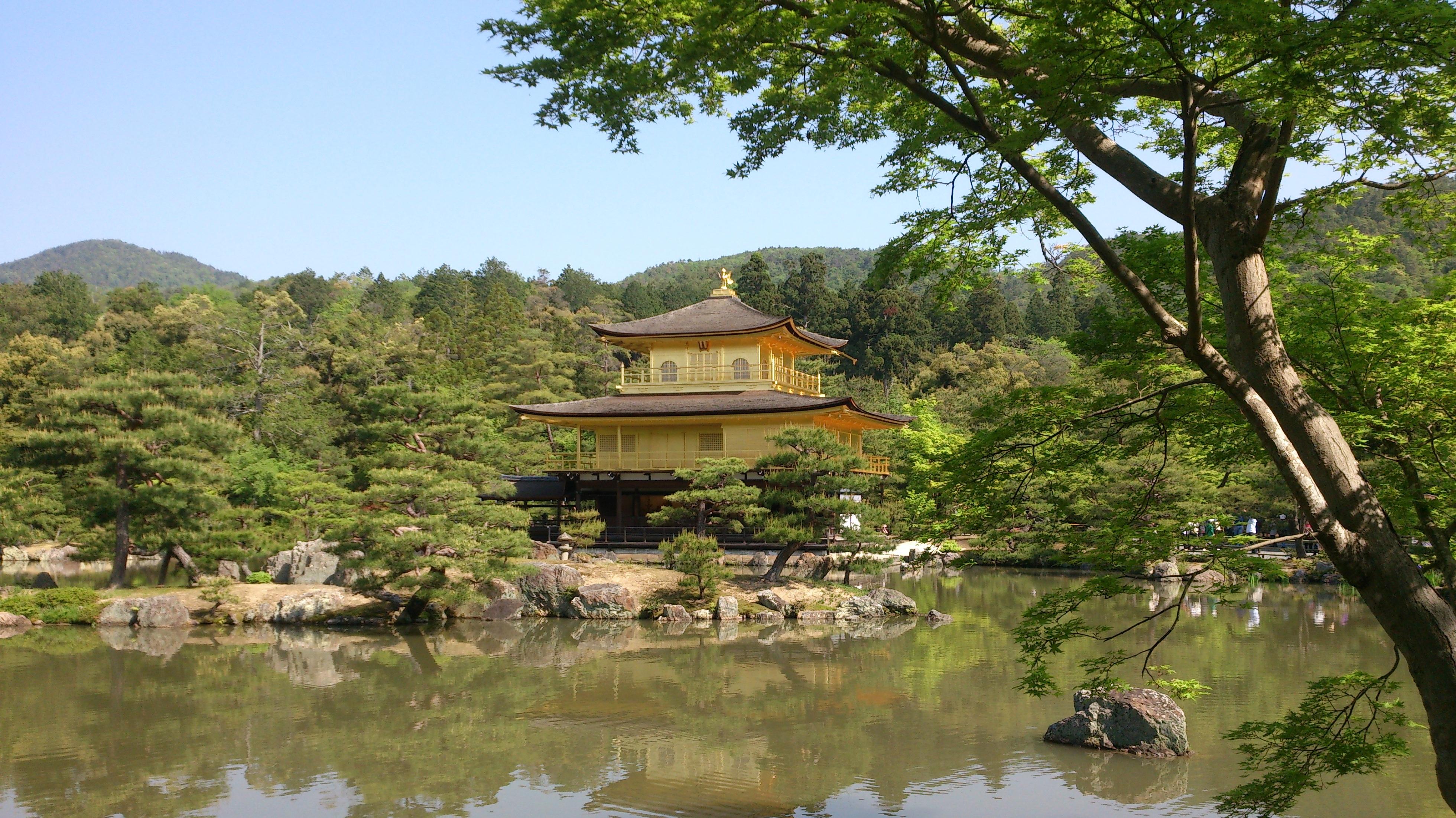 Images gratuites fleur lac tang jardin japon for Jardin kyoto
