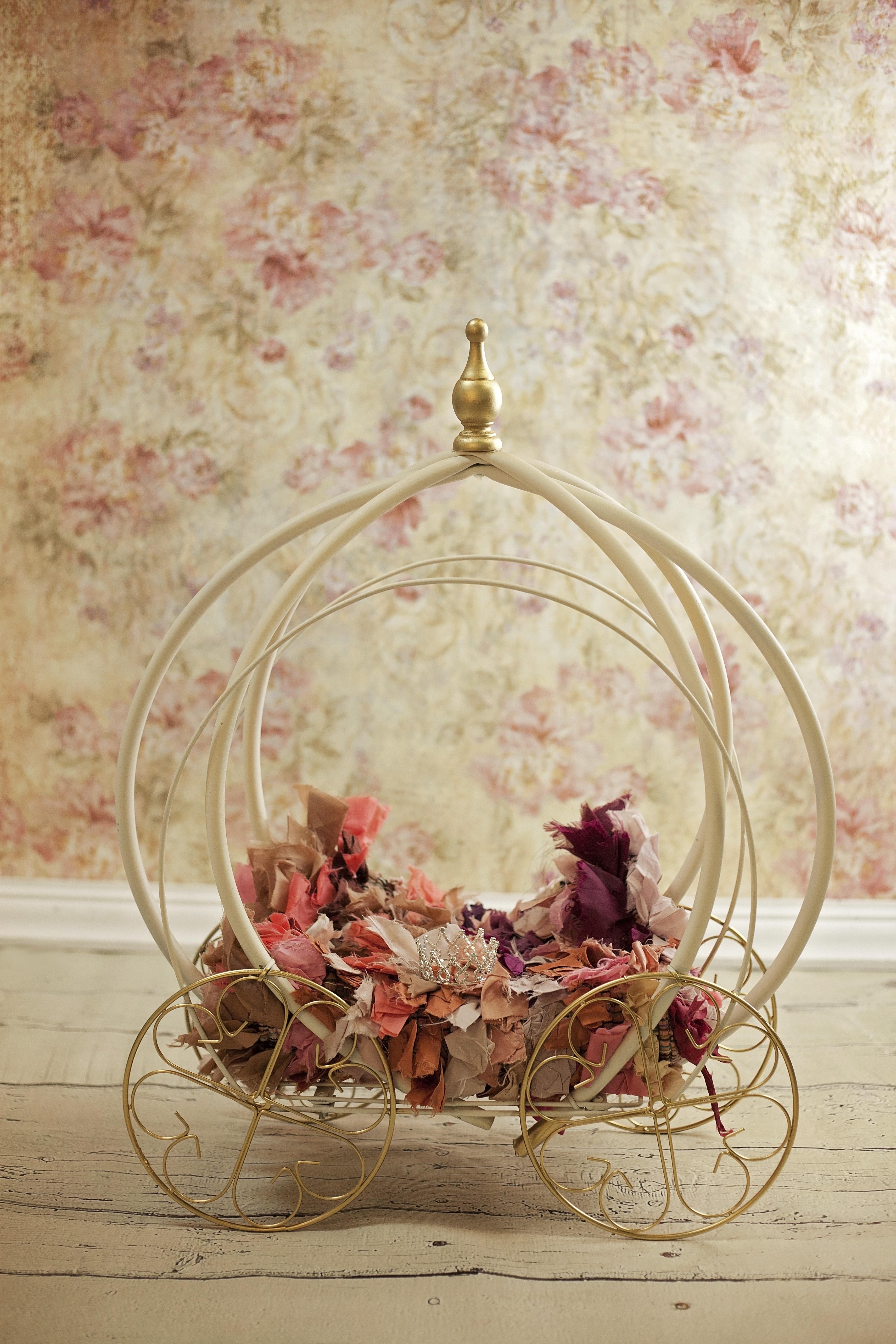Fotoğraf çiçek Aydınlatma Bebek Boyama Sanat Yeni Doğan
