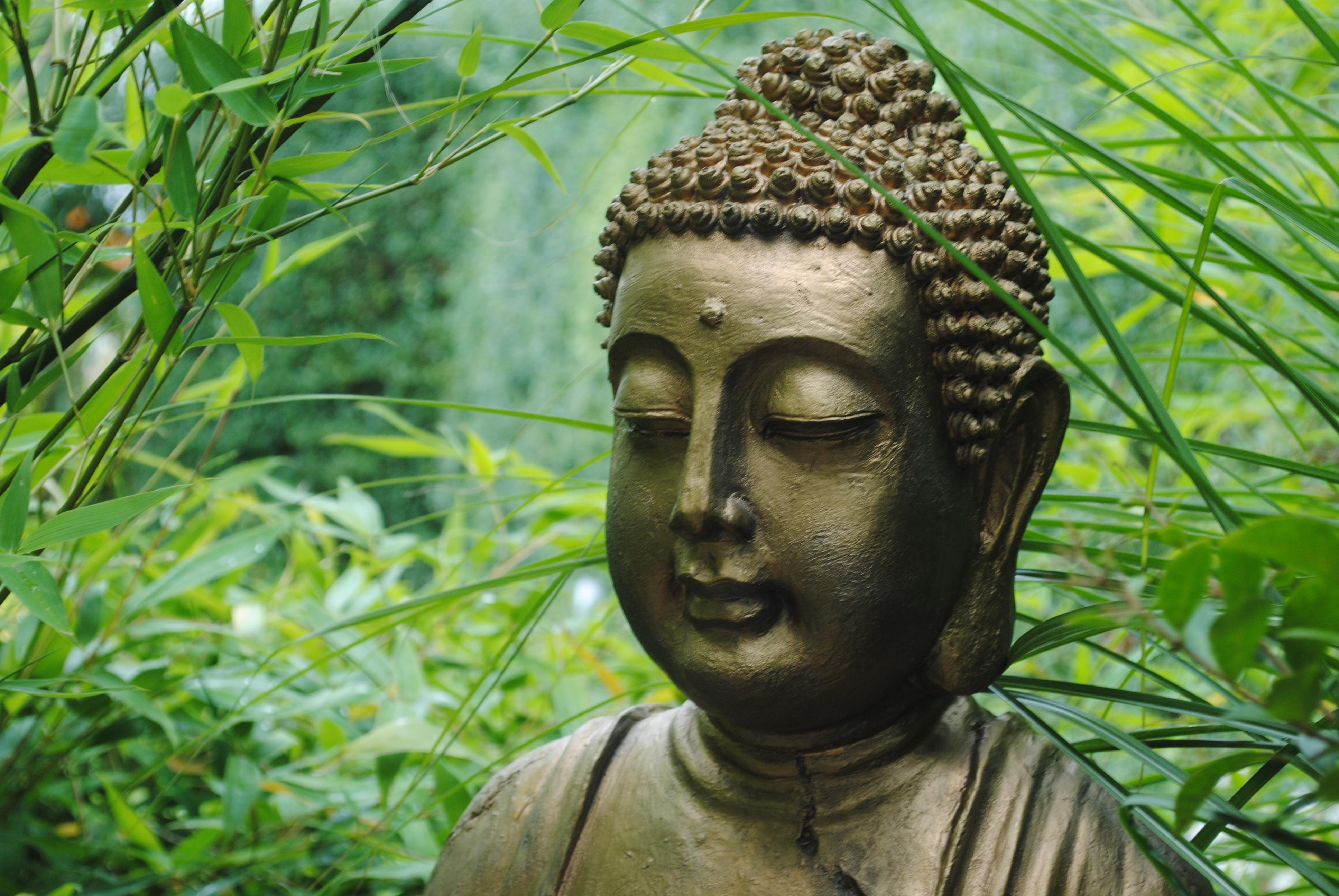 gratis billeder blomst monument statue gr n jungle buddhisme asien botanik have. Black Bedroom Furniture Sets. Home Design Ideas