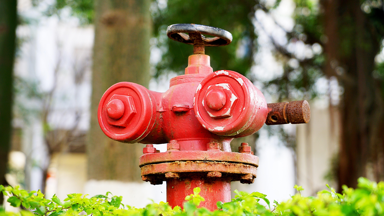 Настенные типы пожарных датчиков фото современном