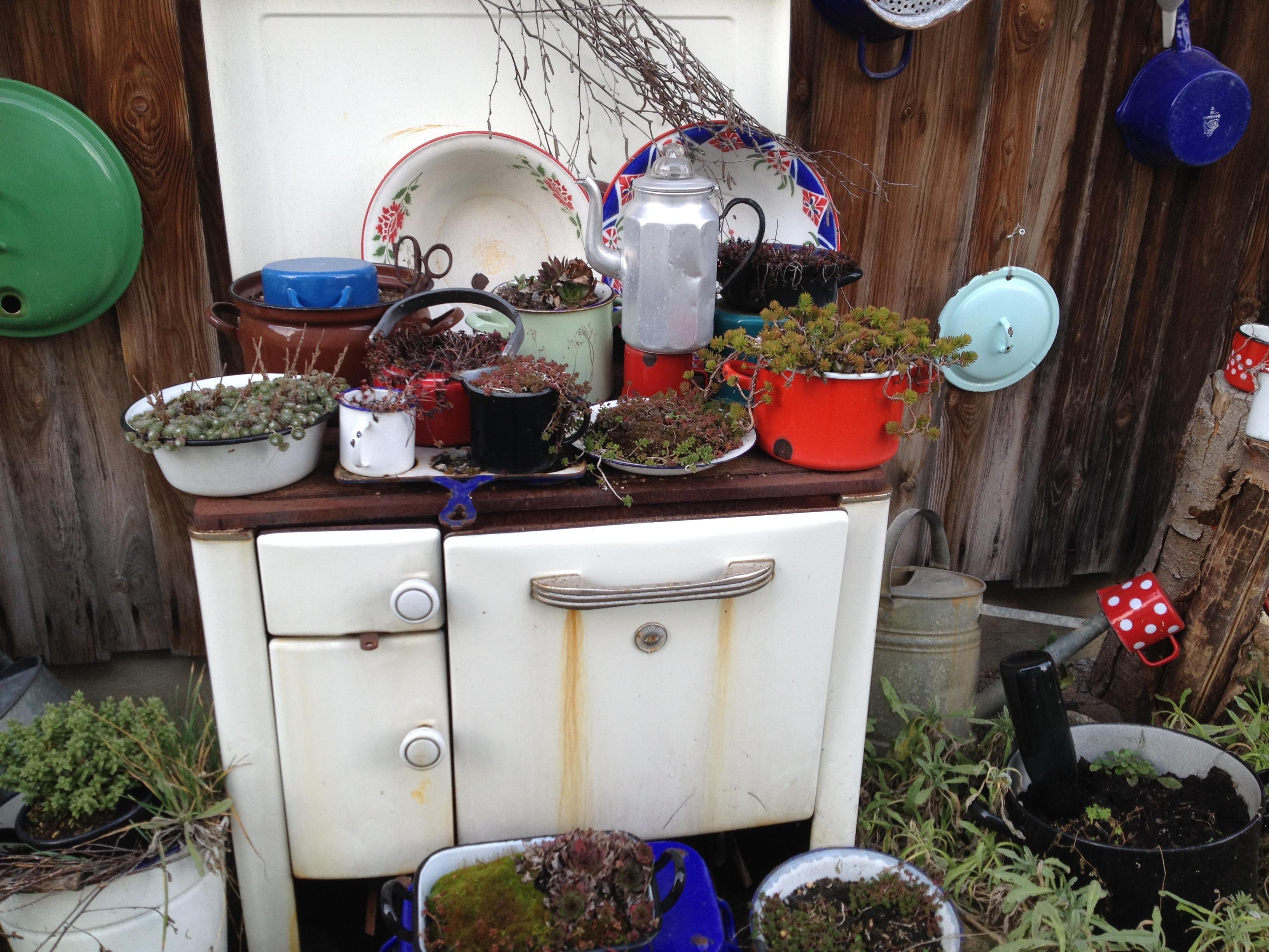 Gratis afbeeldingen : bloem oud huis achtererf meubilair kamer