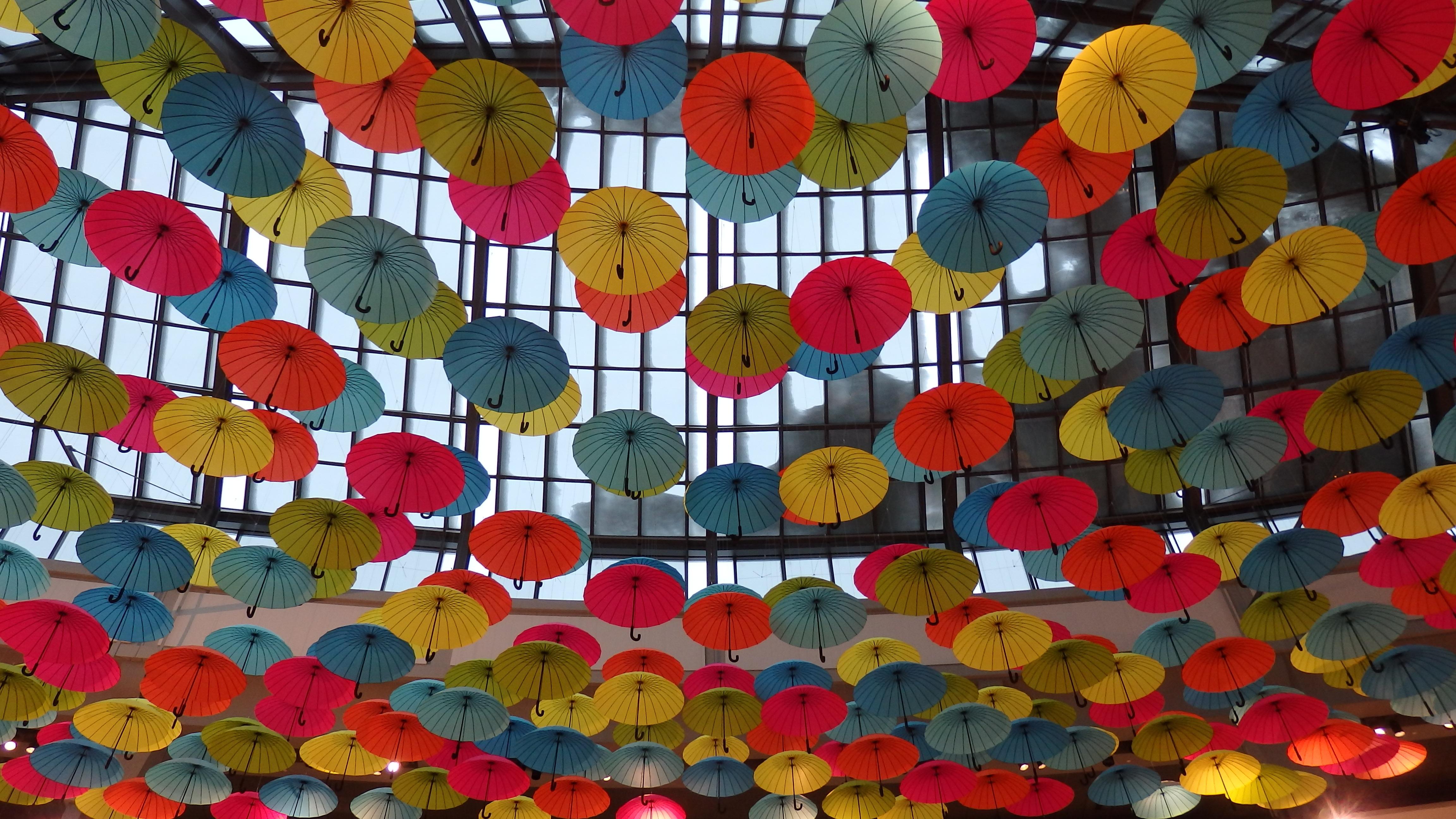 Fotoğraf çiçek Desen şemsiye Renk Oyuncak Dekor Daire