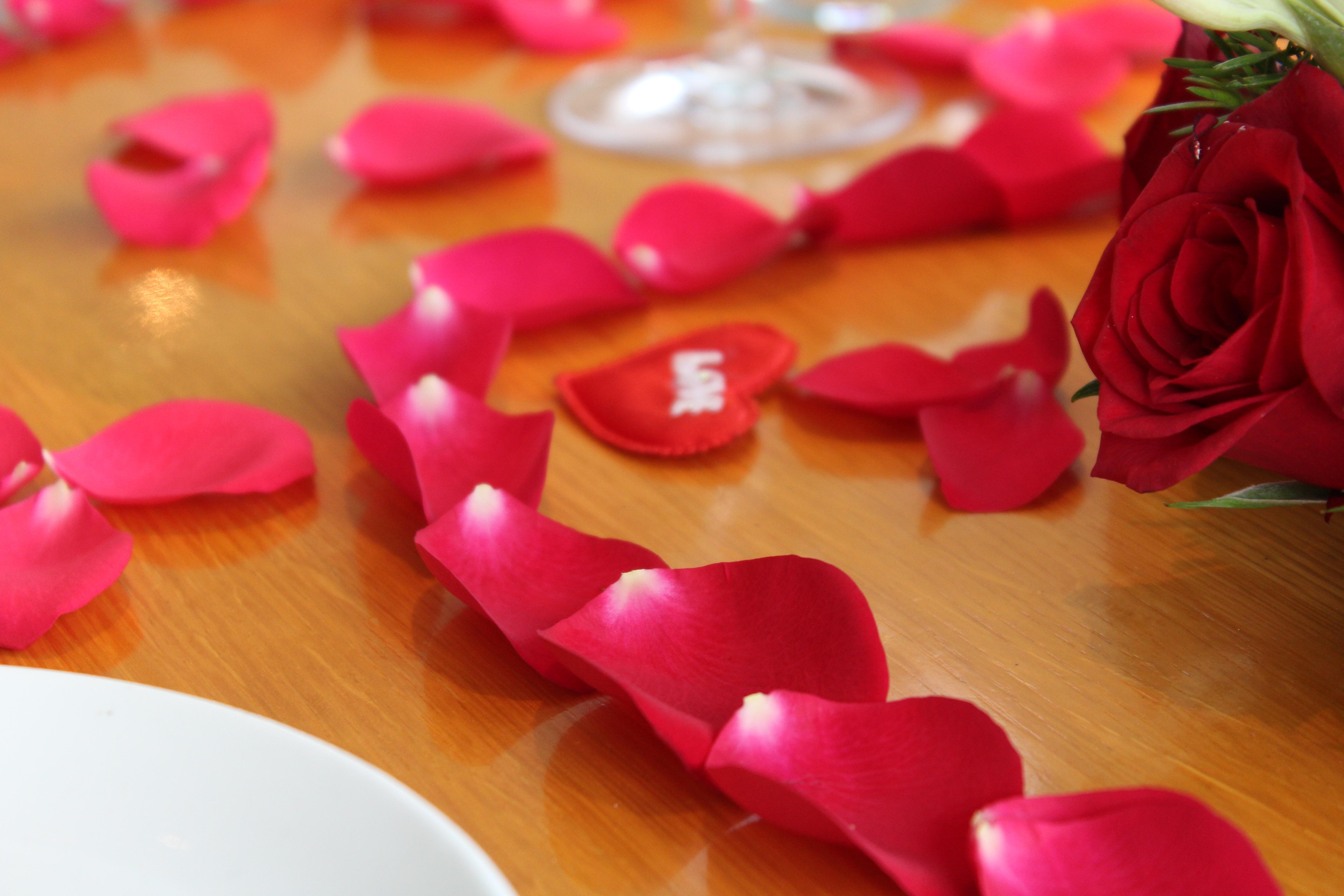 Free Images : flower, petal, love, heart, rose, food, red