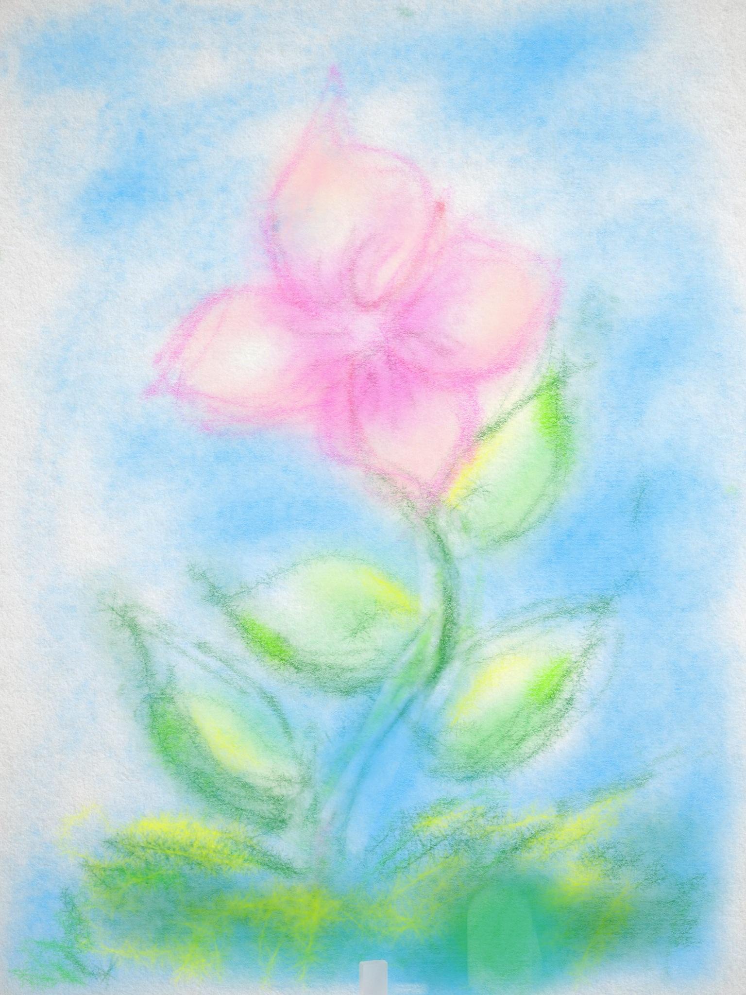 Gambar Daun Bunga Lukisan Sketsa Gambar Pastel Tanaman