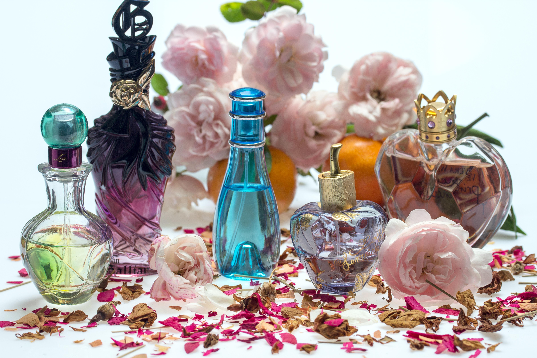 free images   flower  petal  spring  bottle  still life