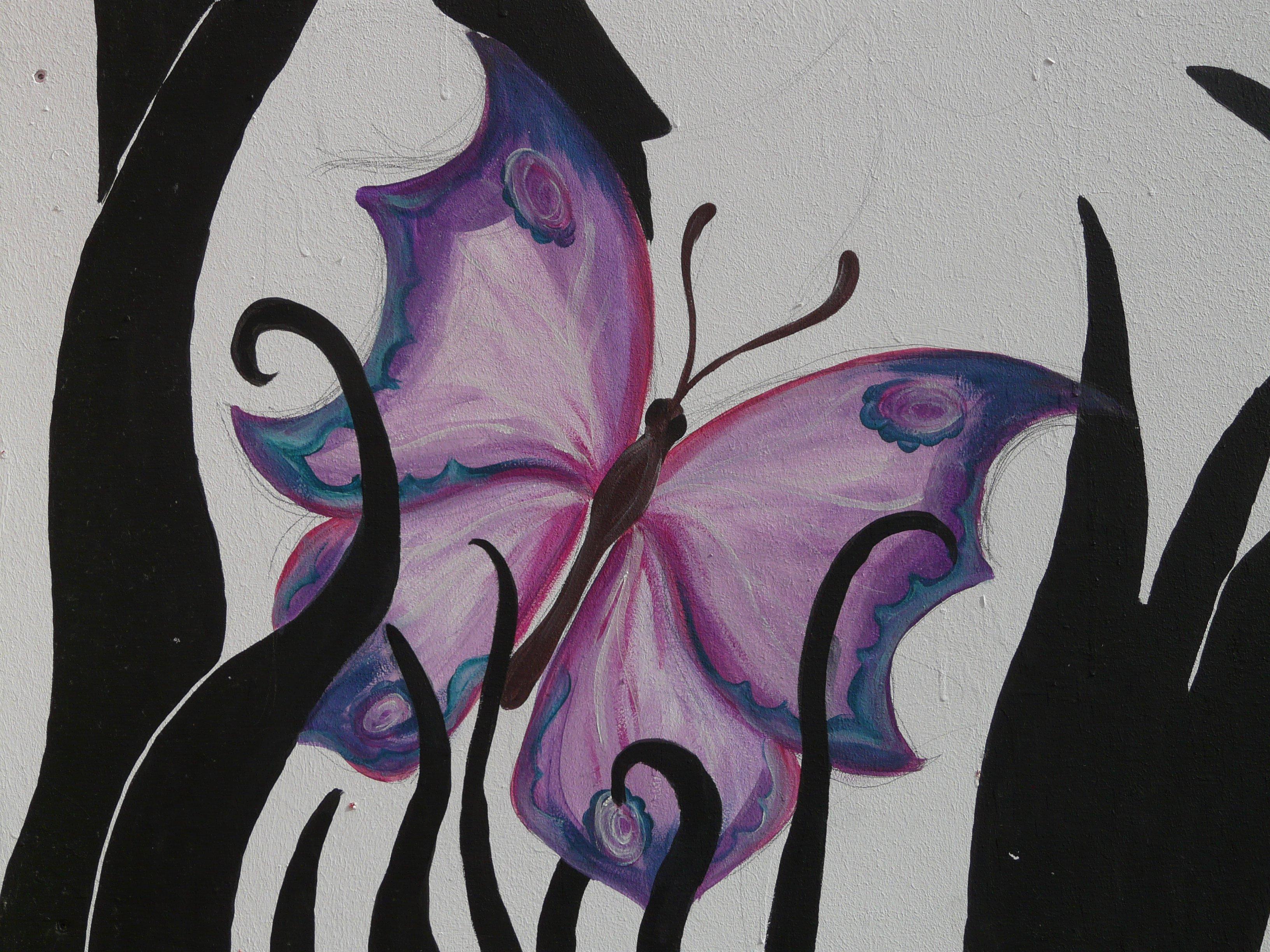 Gambar Bunga Ungu Hewan Warna Kupu Kupu Coretan Sketsa
