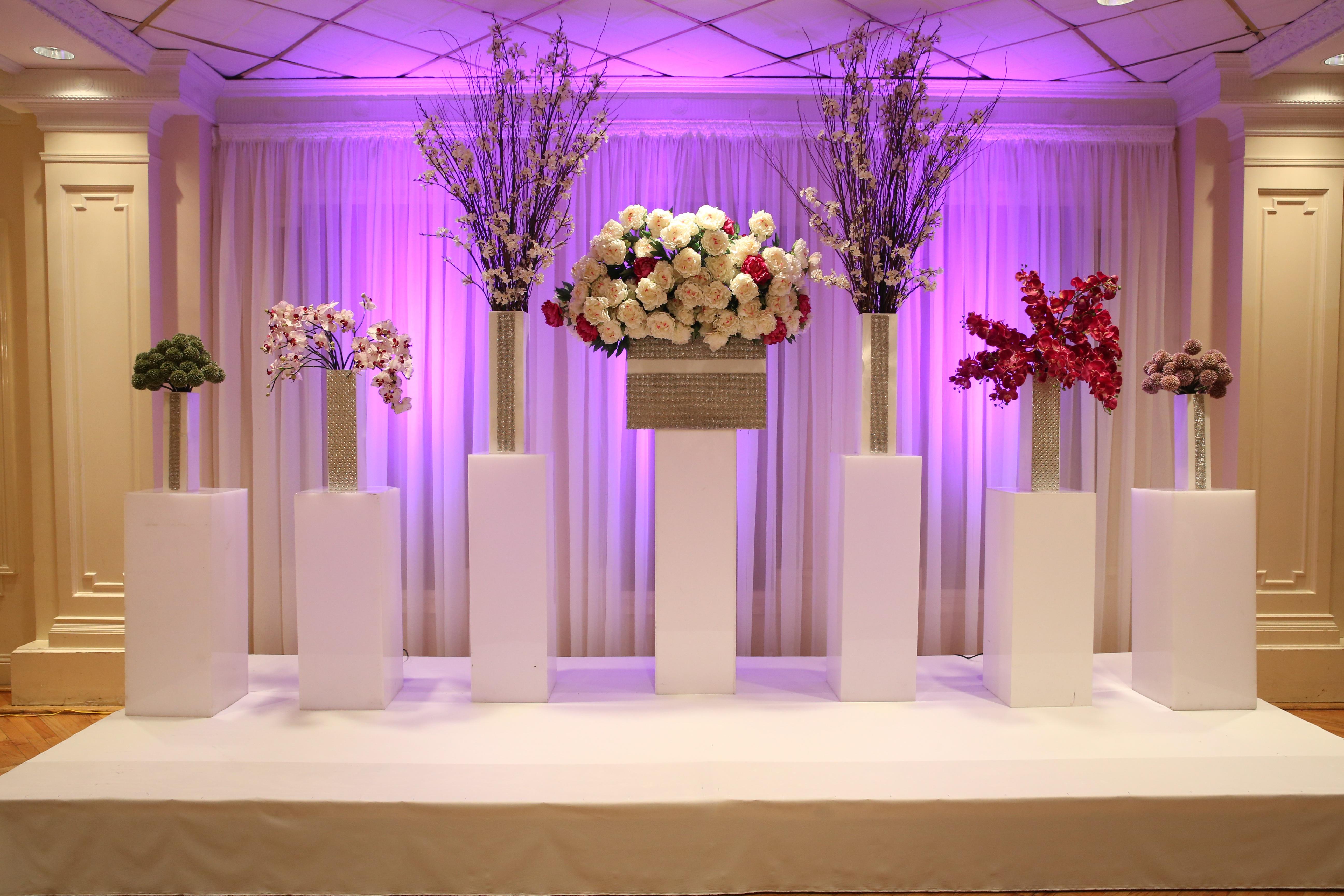 Цветы в картинках для зала