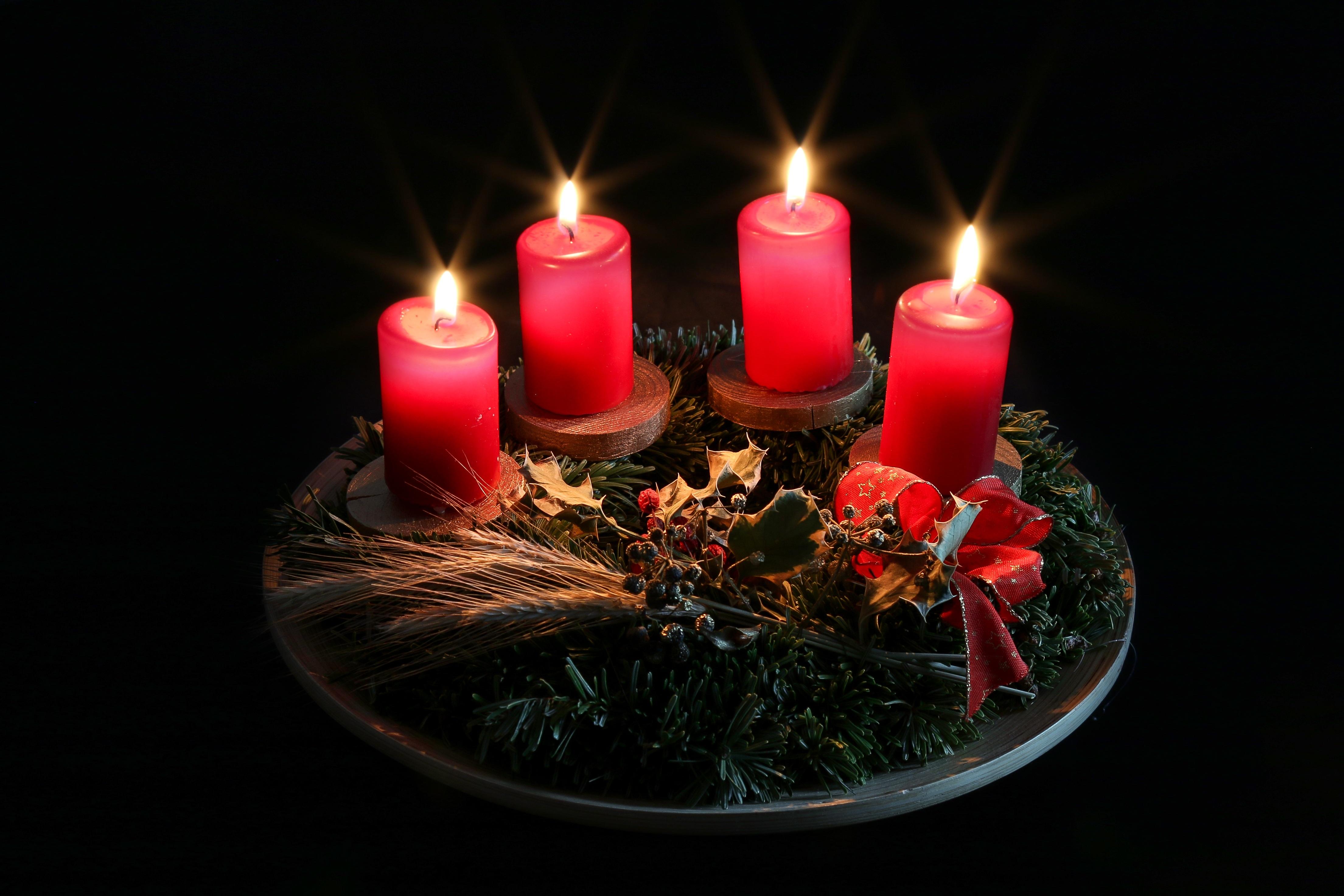 Adventskranz Bilder Kostenlos kostenlose foto blume rot kerze weihnachten beleuchtung dekor