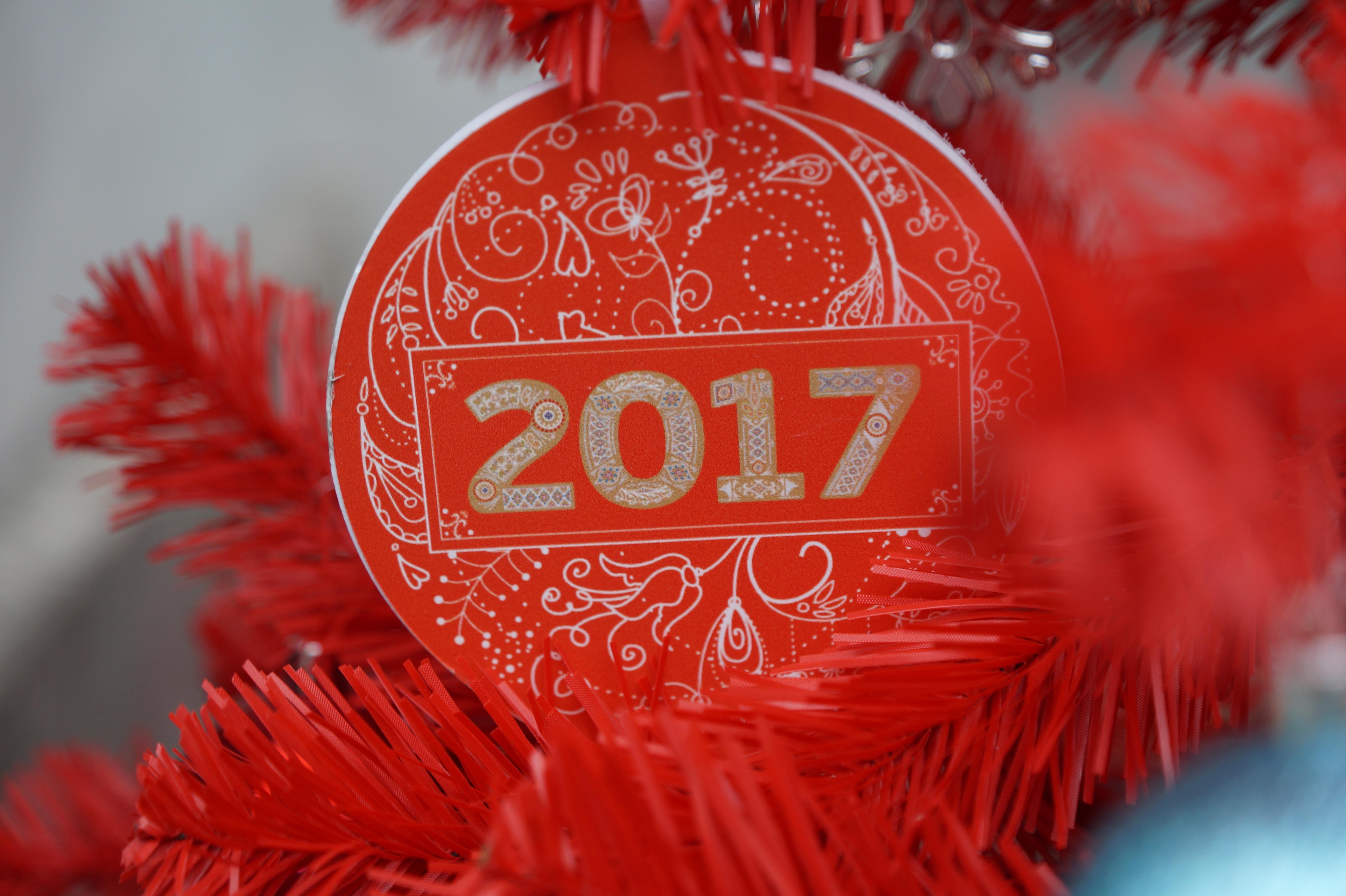 Images gratuites fleur rouge couleur vacances arbre de no l d coration de no l un - Date vacances noel 2017 ...