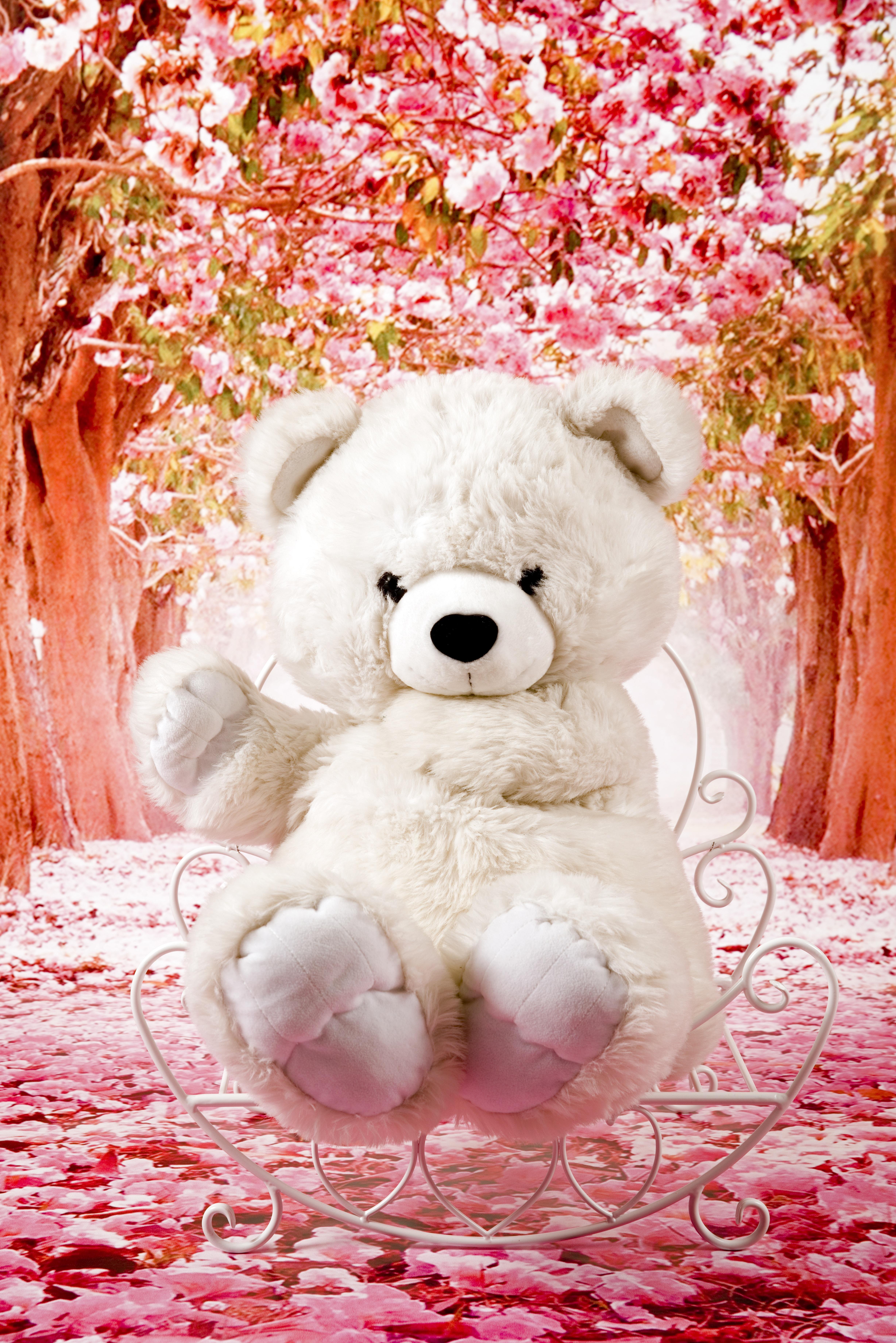 Картинки с плюшевым медвежонком красивые, выбора картинки
