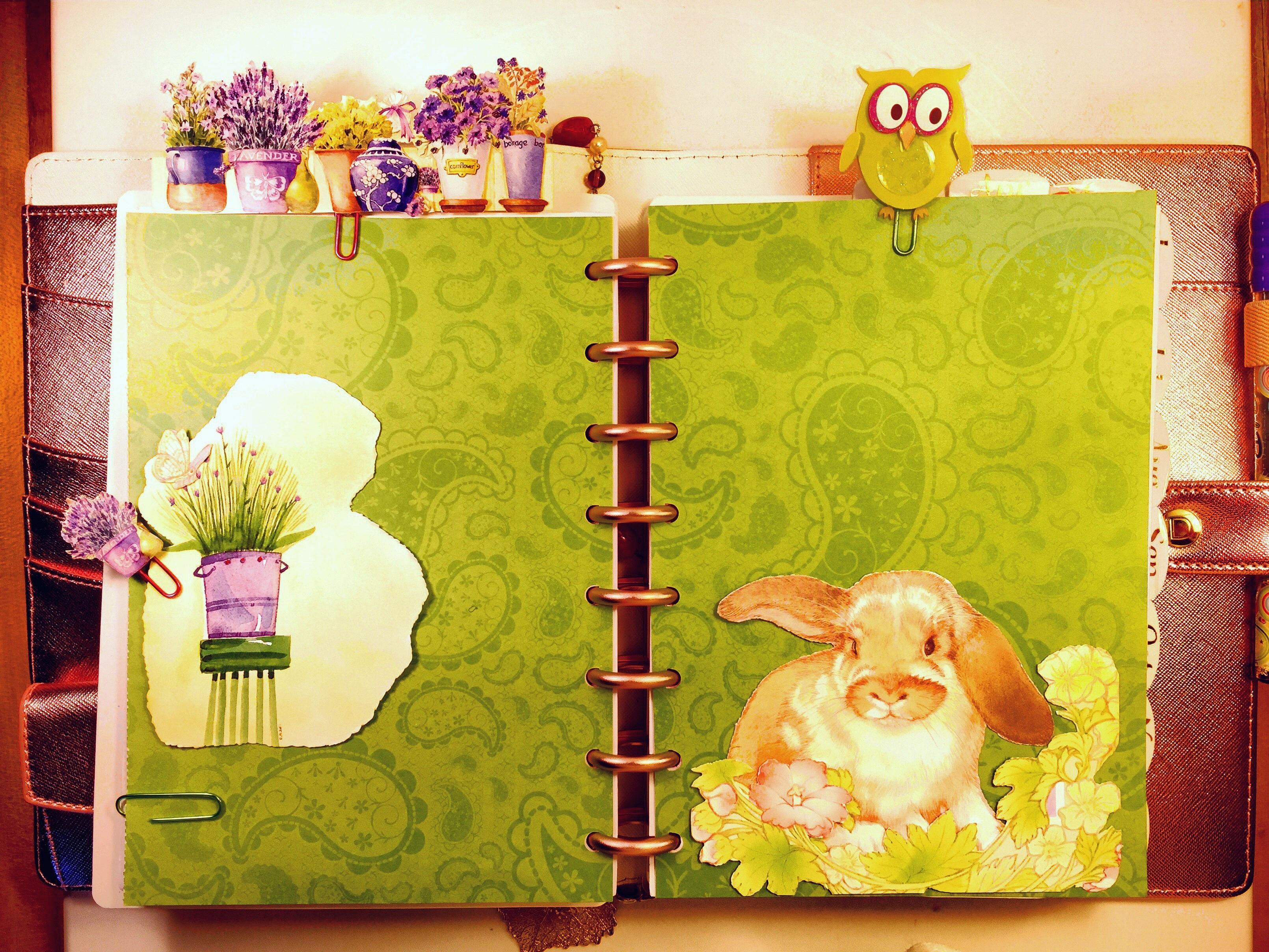 free images flower spring planner interior design art