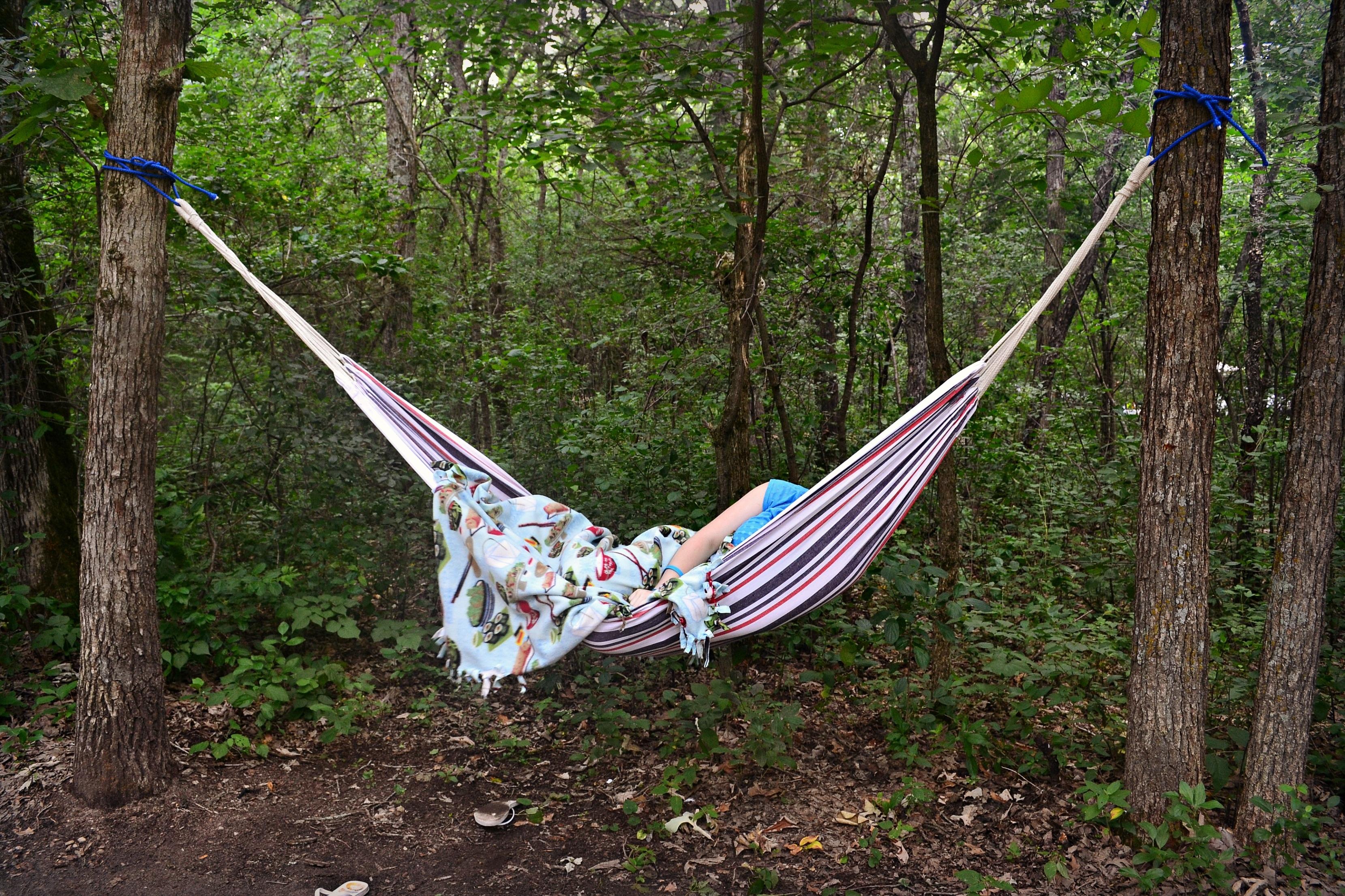 Images Gratuites Fleur été Vacances Camping Hamac Camp Des