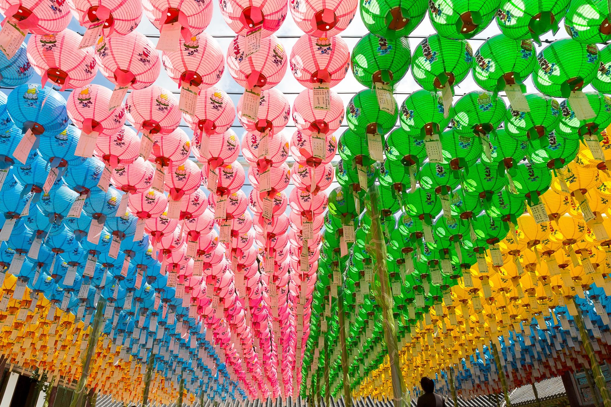 Fotos gratis : flor, viajar, patrón, juguete, textil, art, Daegu ...