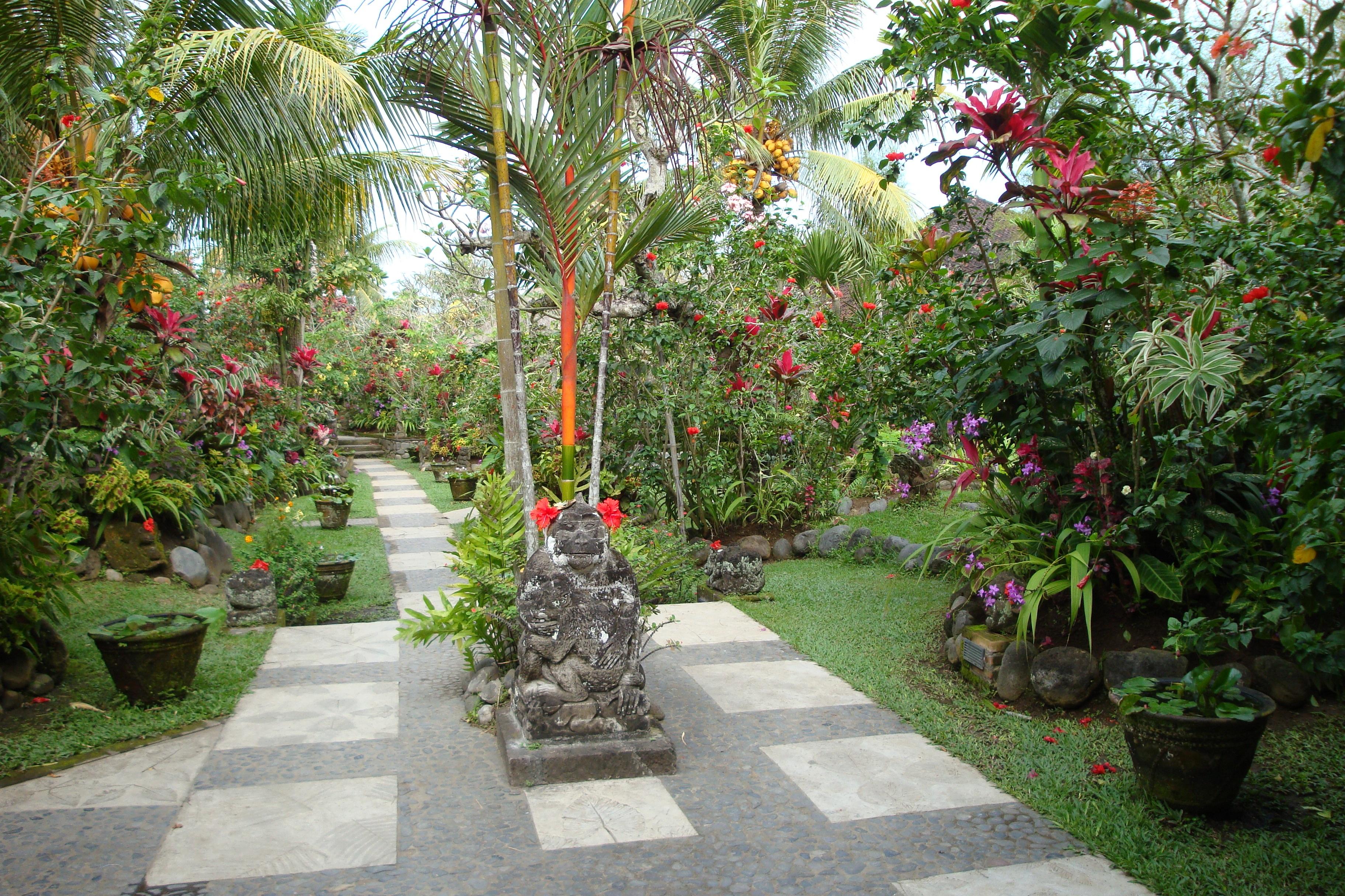 Images gratuites fleur passerelle tropical paix for Amenagement jardin tropical