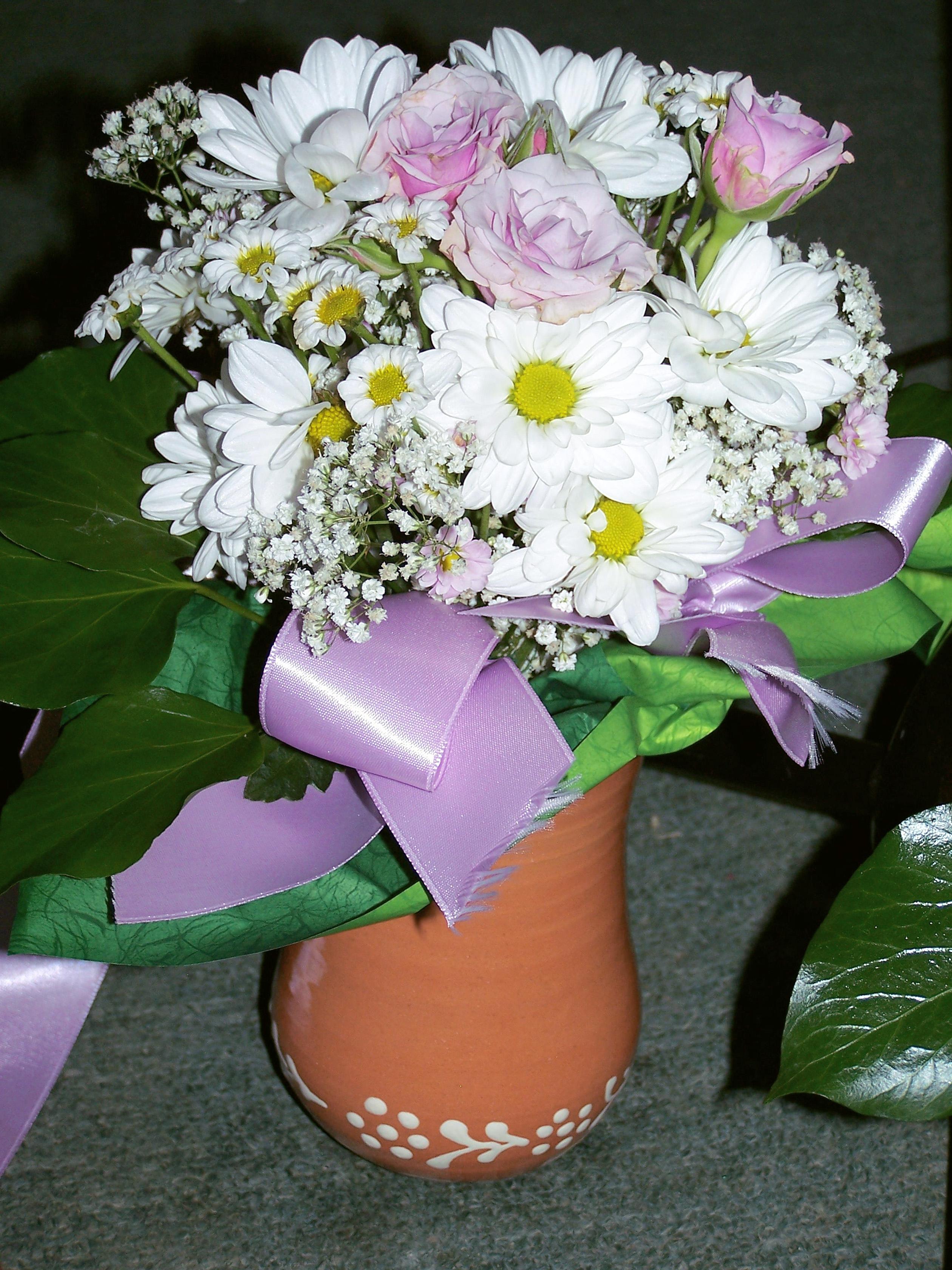 Gambar Putih Bunga Aster Vas Pita Buket Liburan Salam Bagus Indah Bunga Potong Merangkai Bunga Budidaya Bunga Menanam Berwarna Merah Muda Tanaman Berbunga Desain Bunga Daun Bunga Ungu Pot Bunga Inti