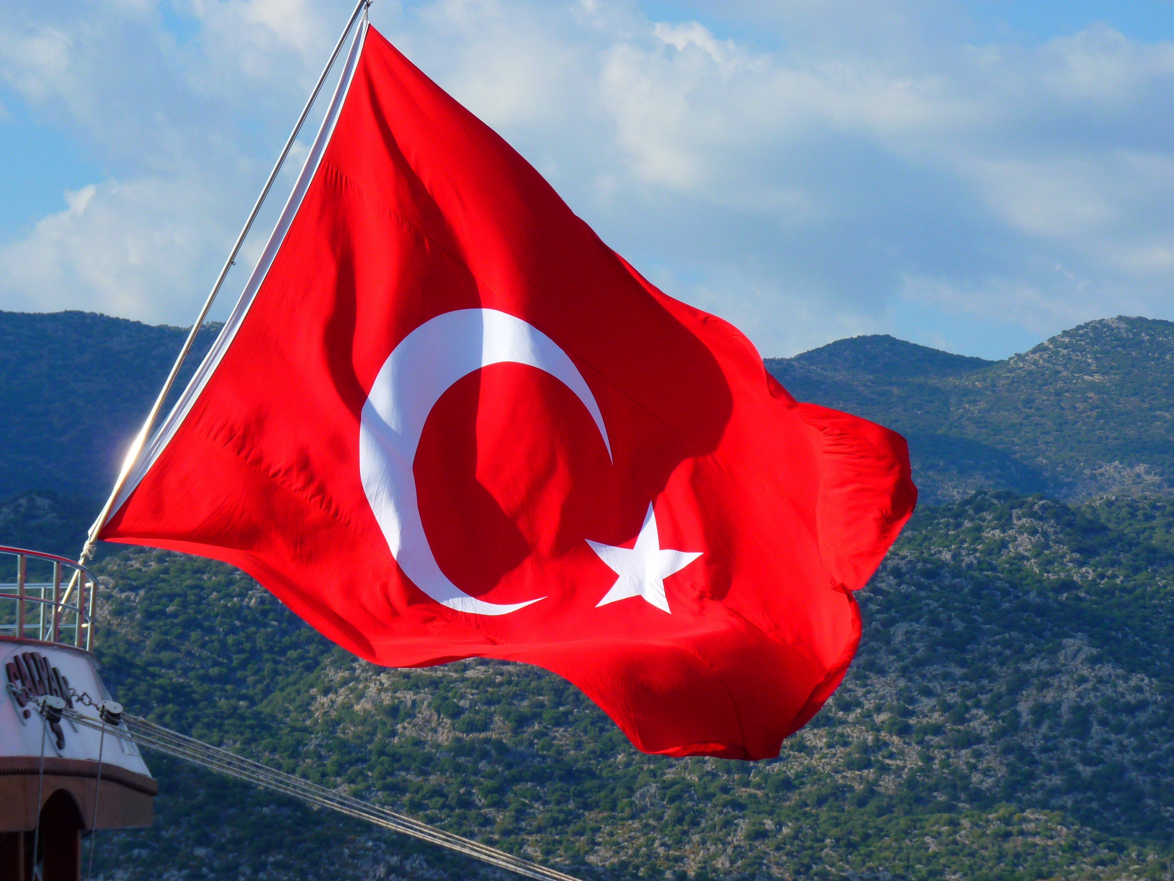 Bildet : blomst, vind, rød, fargerik, nasjonal flagg, Tyrkia, blåse, halvmåne, rødt flagg ...