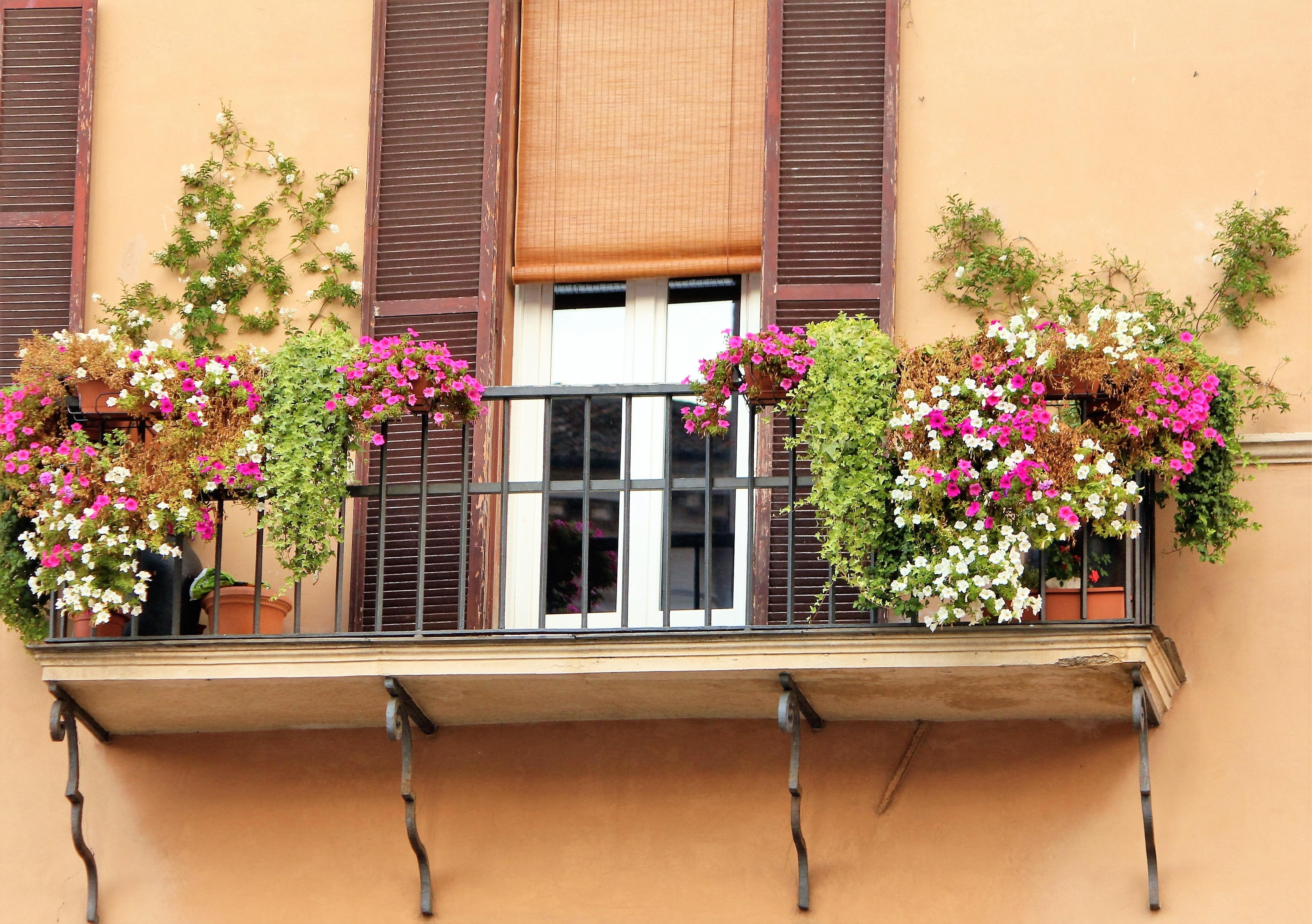 Images Gratuites Fleur Maison Balcon Romantique Facade