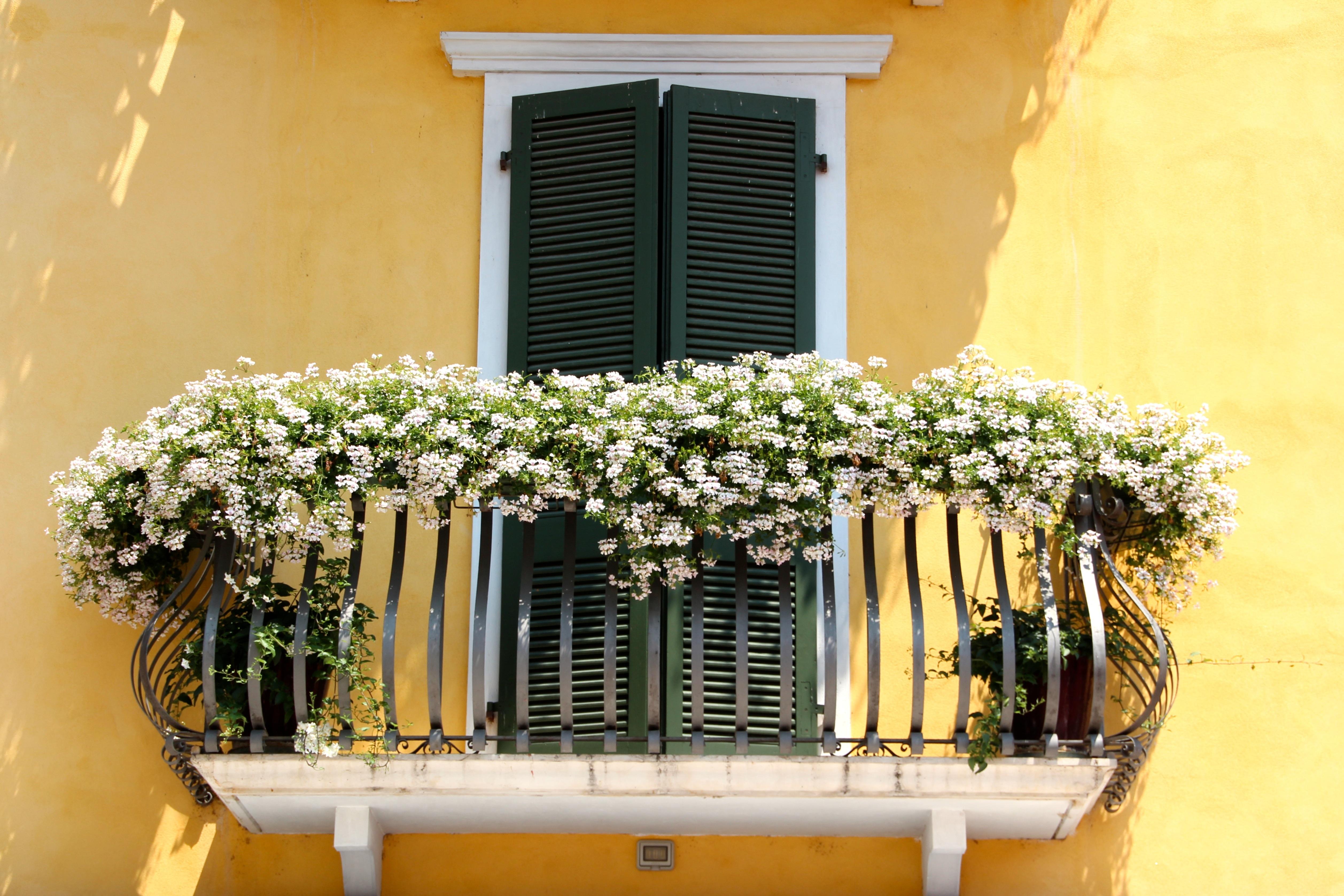 Бесплатная фотография: балкон, цветы, цветочные Ящики - бесп.