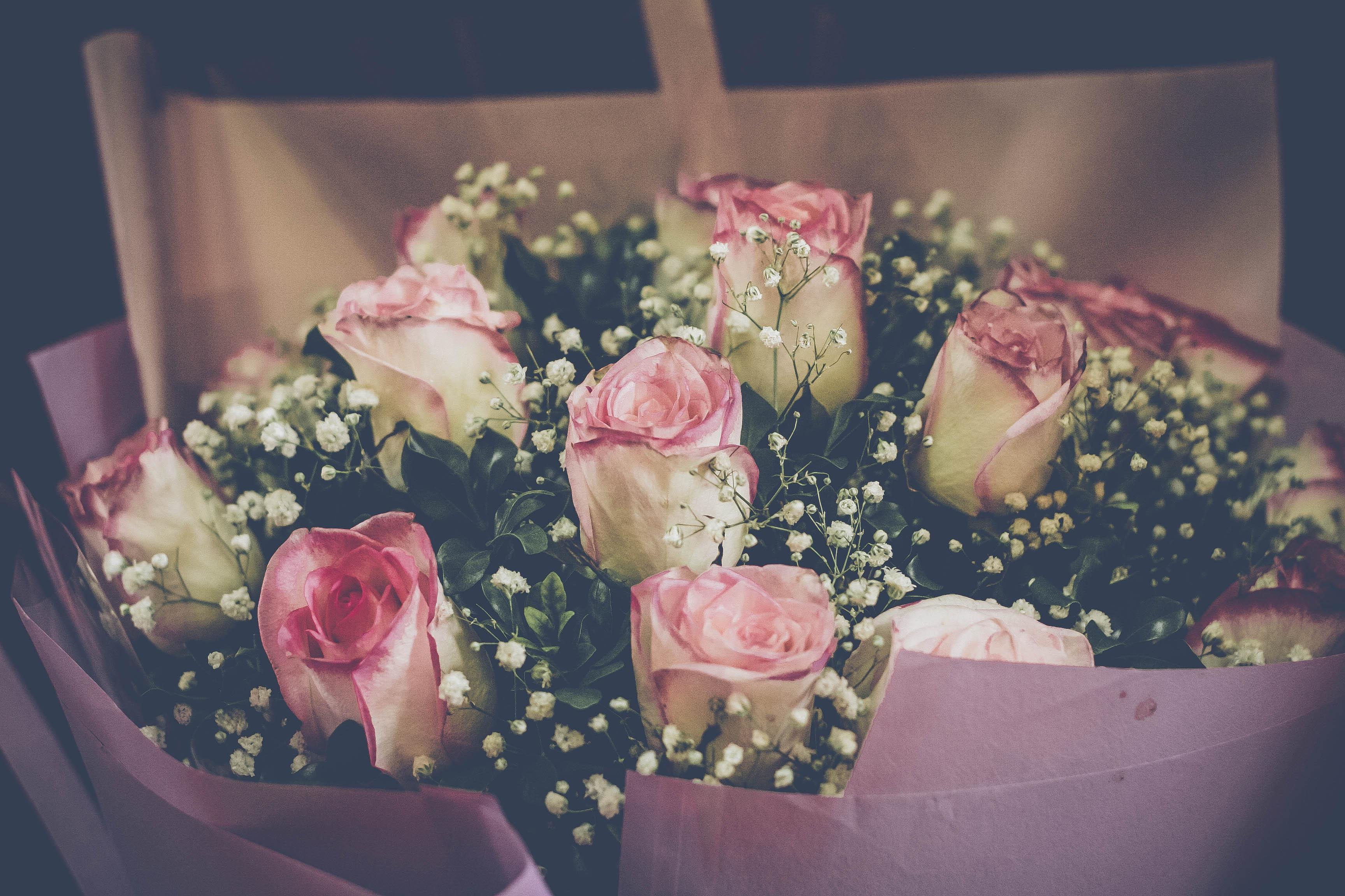 Fotos Gratis Flores Flor Arreglos Florales Rosado