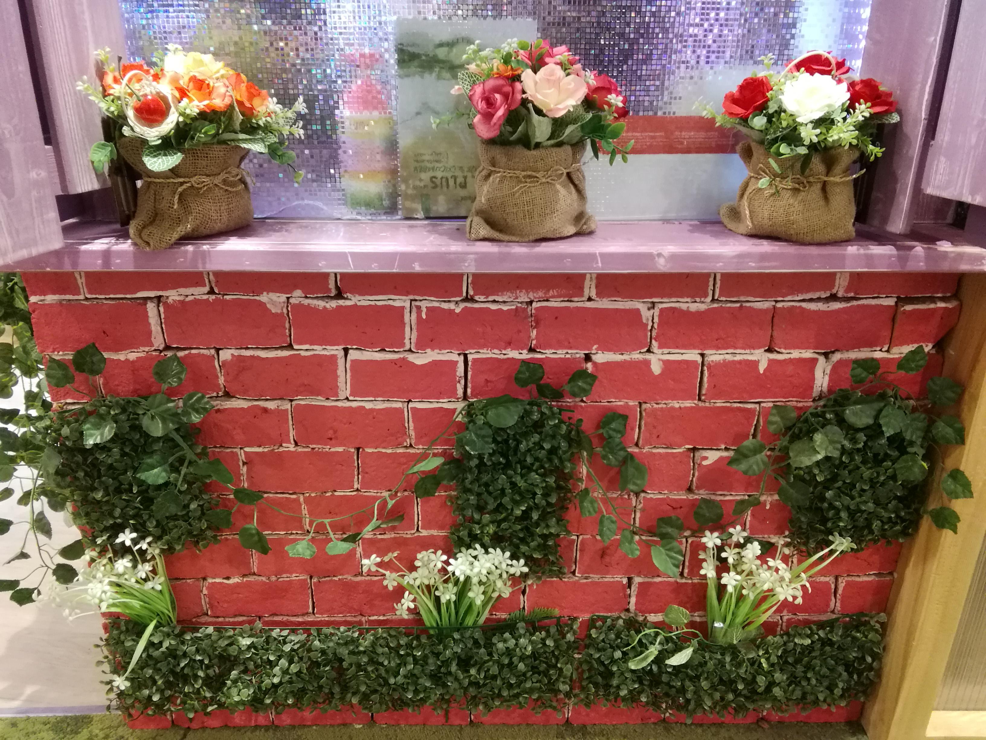 Poze Flori Plante Decor Proiecta Interior Cărămizi