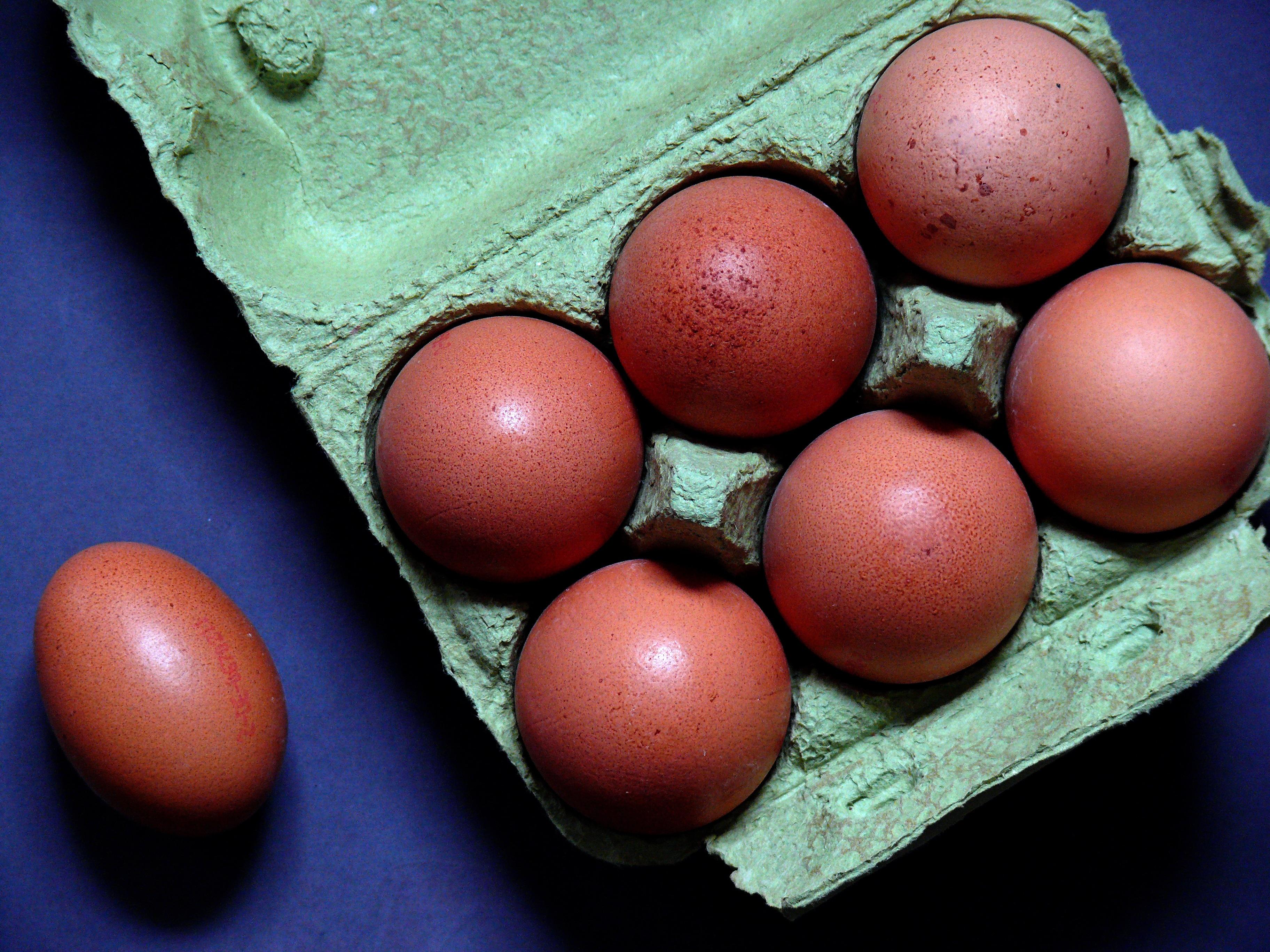 näring i ägg