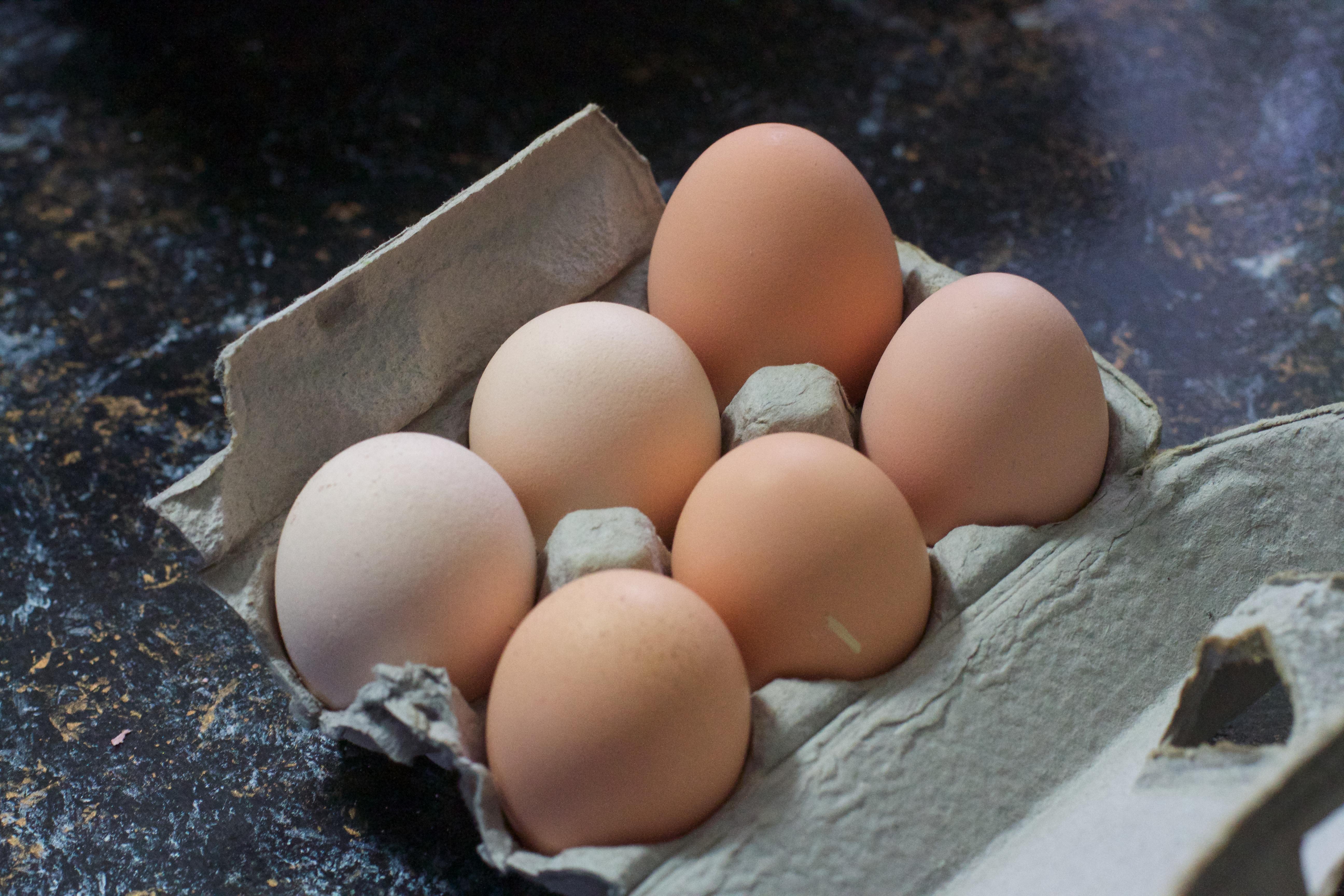 еда яйца графика планеты food eggs graphics planet бесплатно