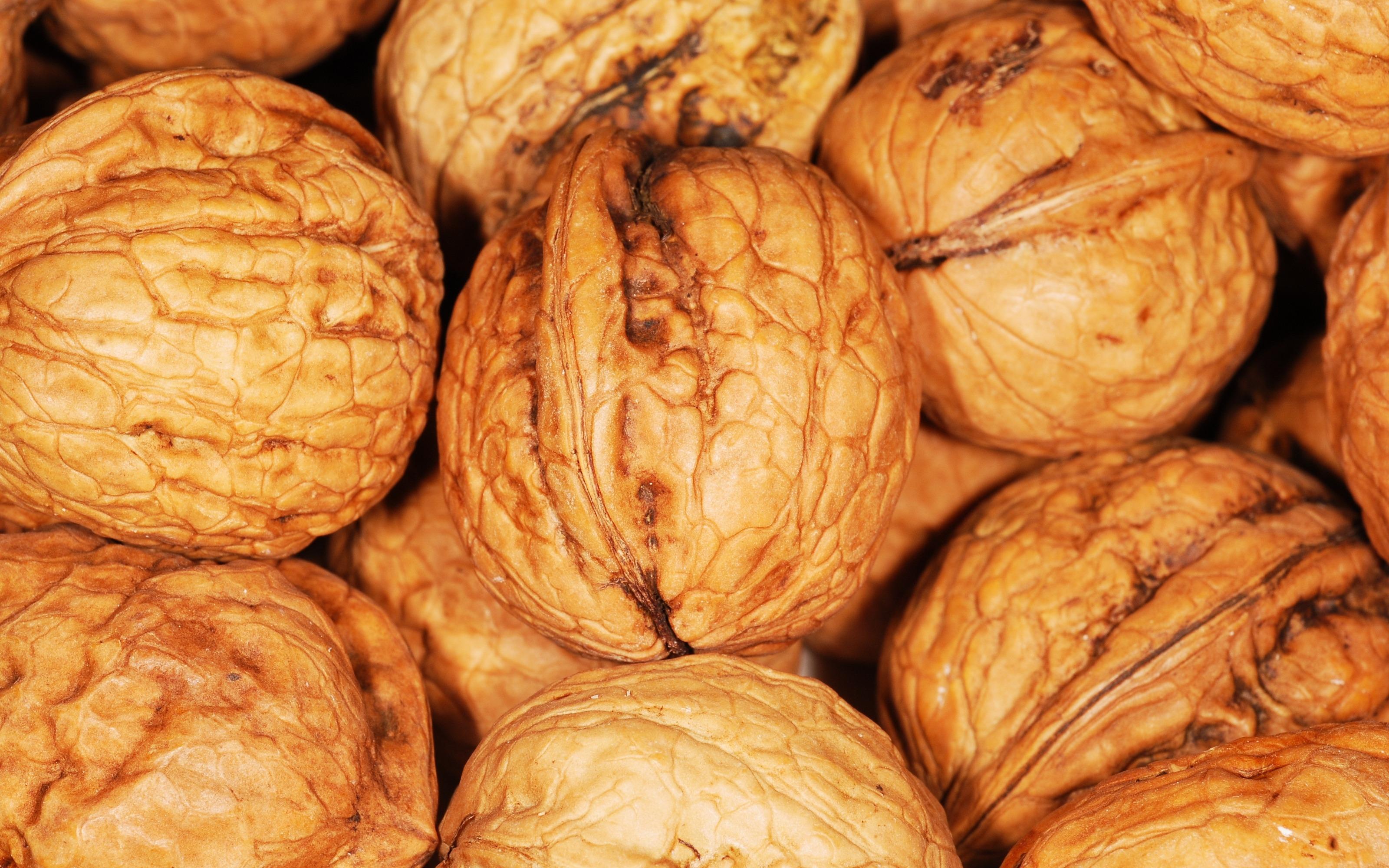 Gambar Makanan Menghasilkan Coklat Camilan Buah Kenari Merapatkan Gila Calabaza Tanaman Berbunga Juglans Labu Musim Dingin Biji Kacang Kacang Pohon 3200x2000 1155638 Galeri Foto Pxhere