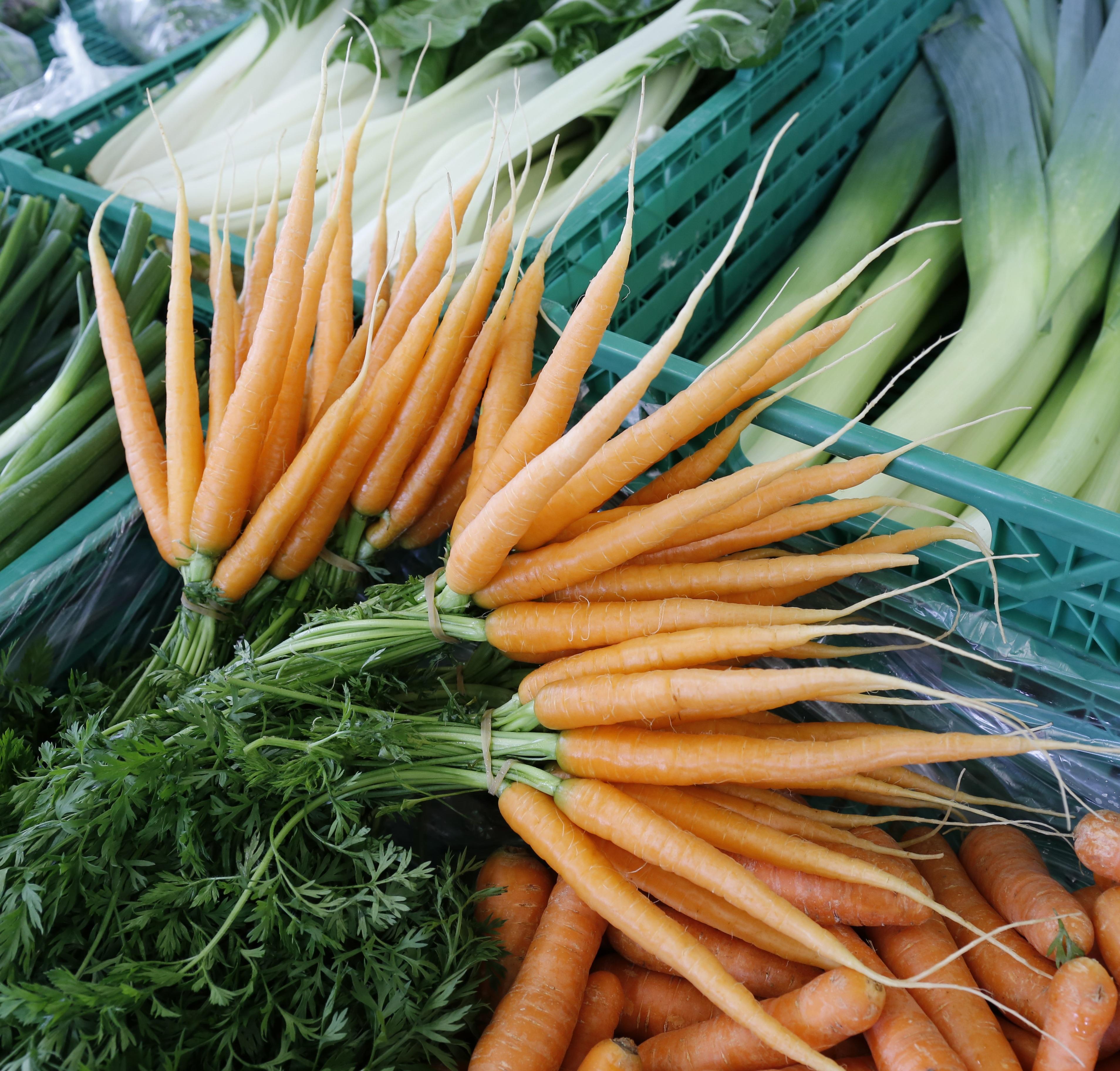Картинки о морковке