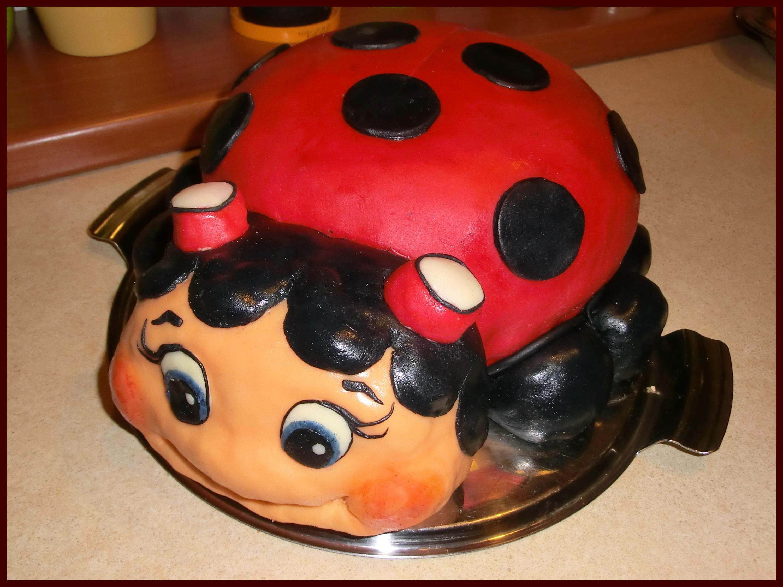 comida rojo insecto mariquita postre pastel mariquita pastel de cumpleaos fondant escarabajo dulzura productos horneados