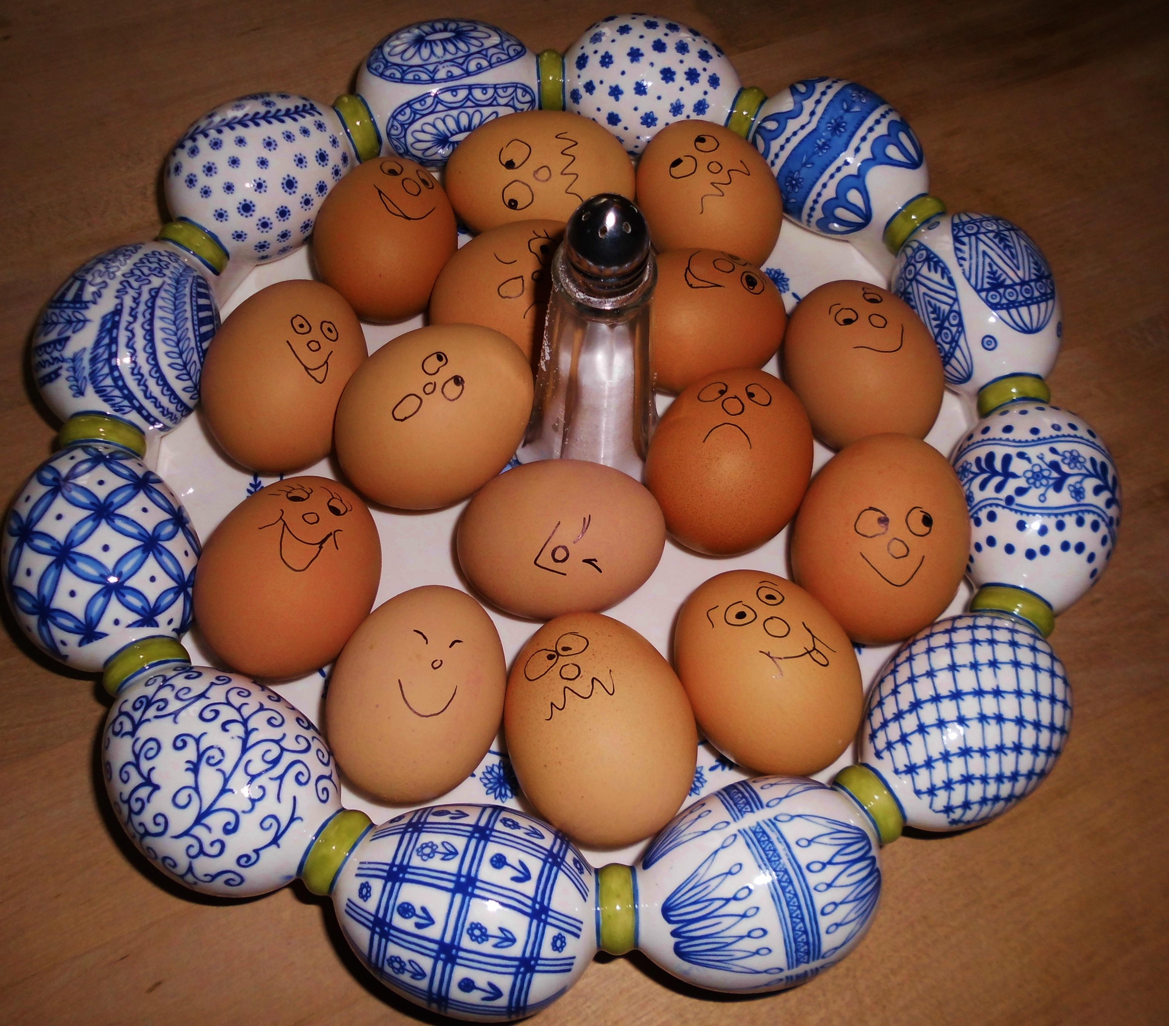 Пасха смешные картинки про яйца, самые
