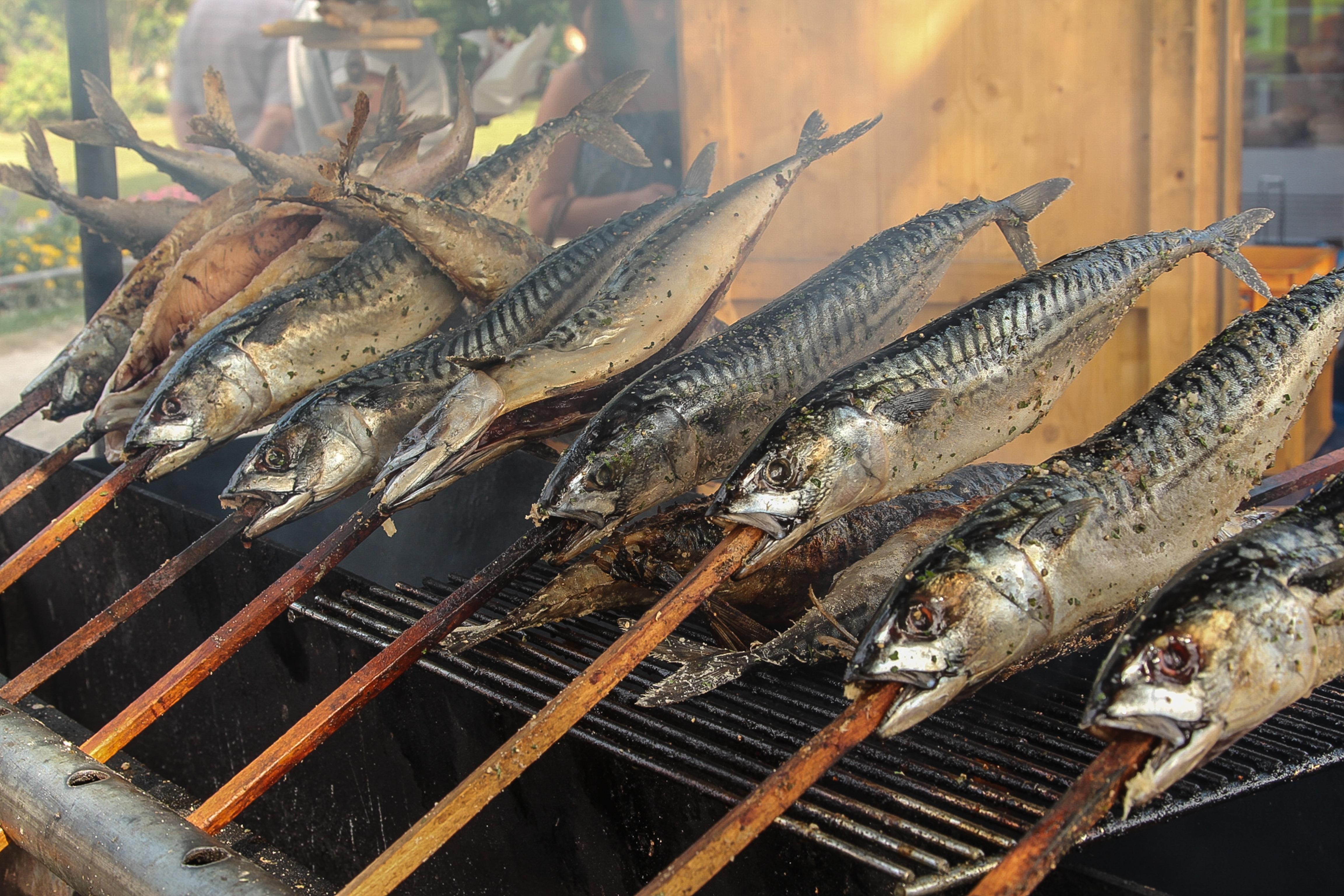 Ilmaisia kuvia ruoka merenel v t kalastaa sy d - Como cocinar sardinas ...