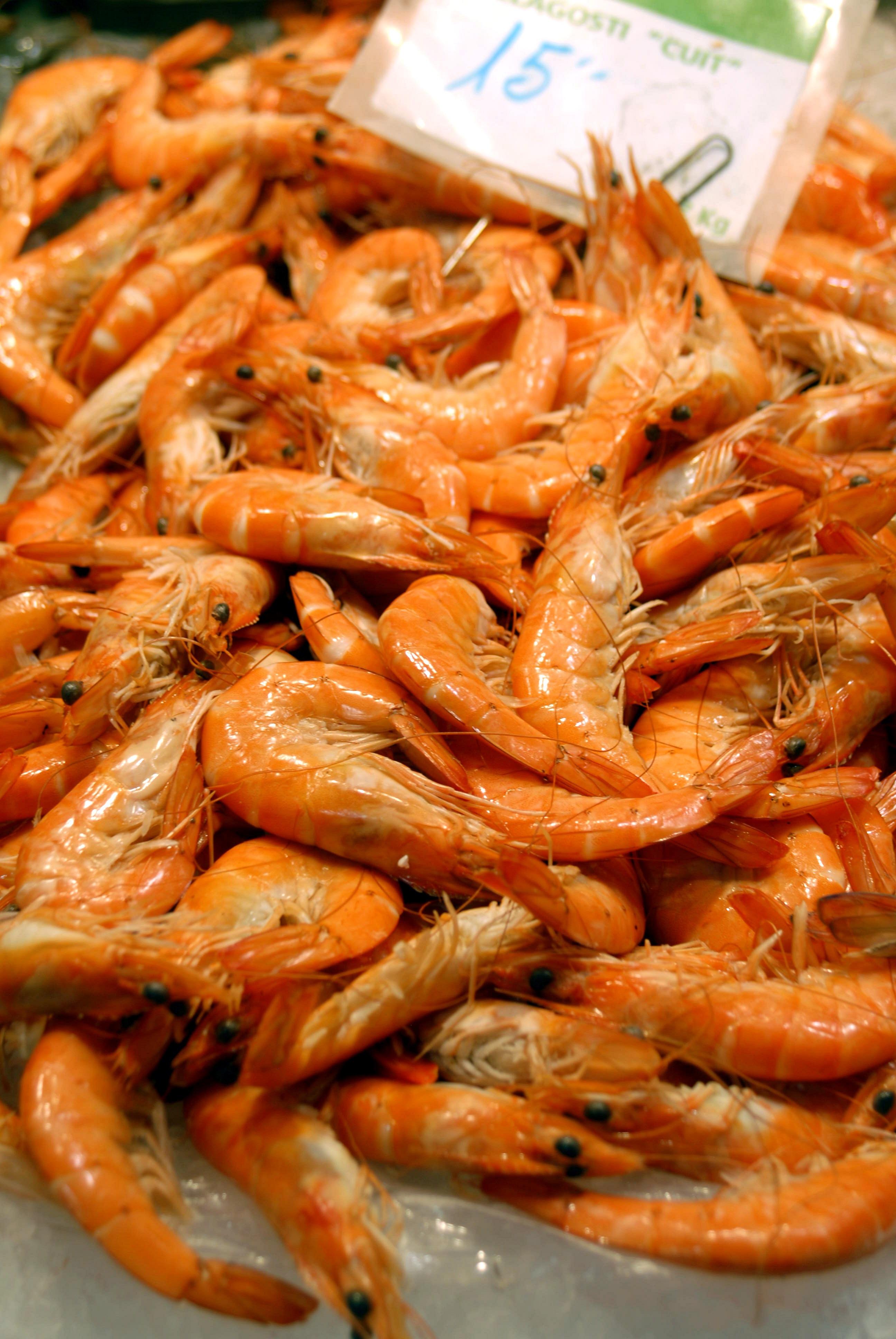 Kabuklu Deniz Ürünleri