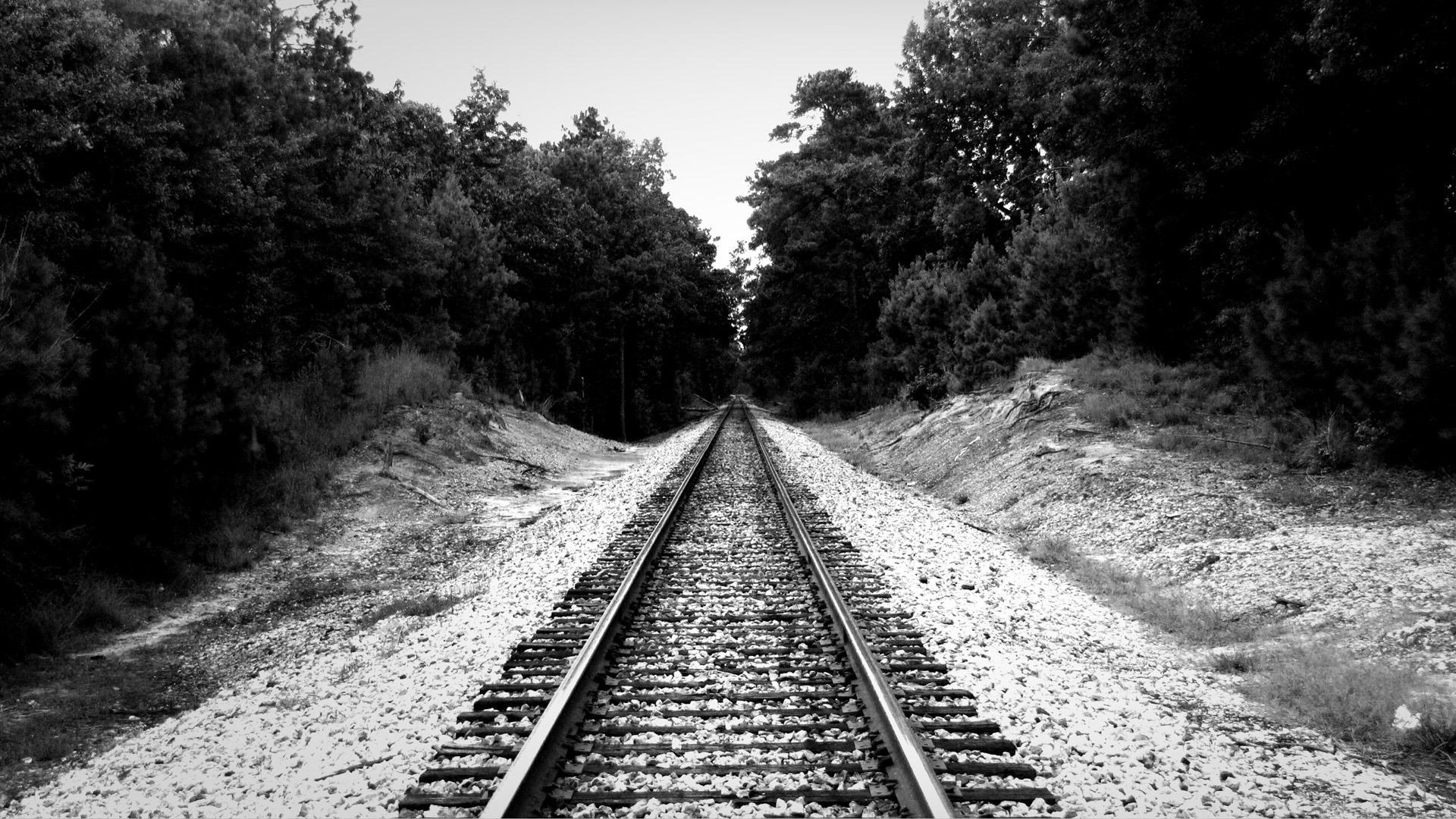 banco de imagens floresta preto e branco pista estrada de ferro ferrovia trilho trem. Black Bedroom Furniture Sets. Home Design Ideas
