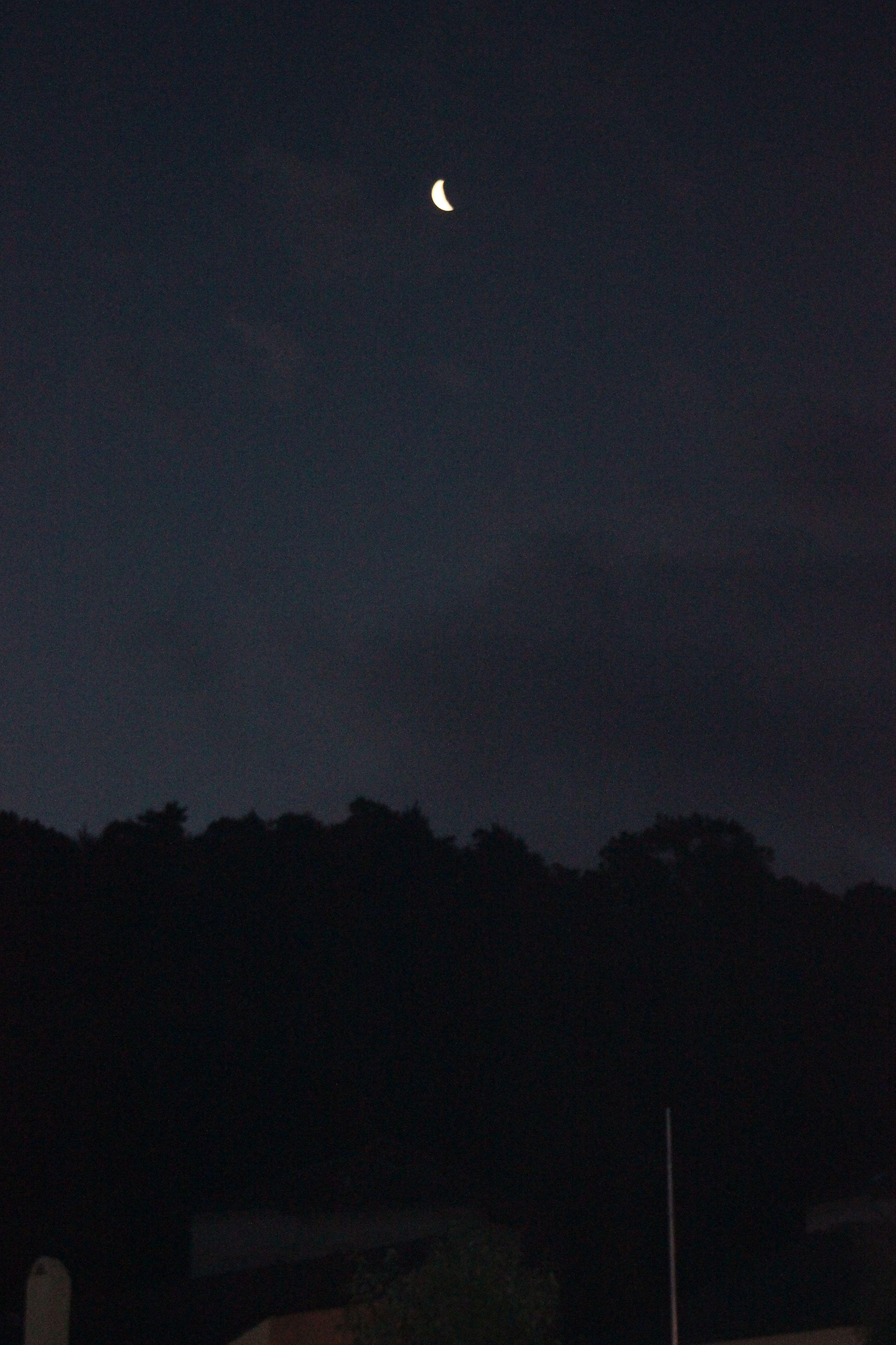 Gambar Hutan Awan Fajar Suasana Senja Kegelapan Lampu Jalan