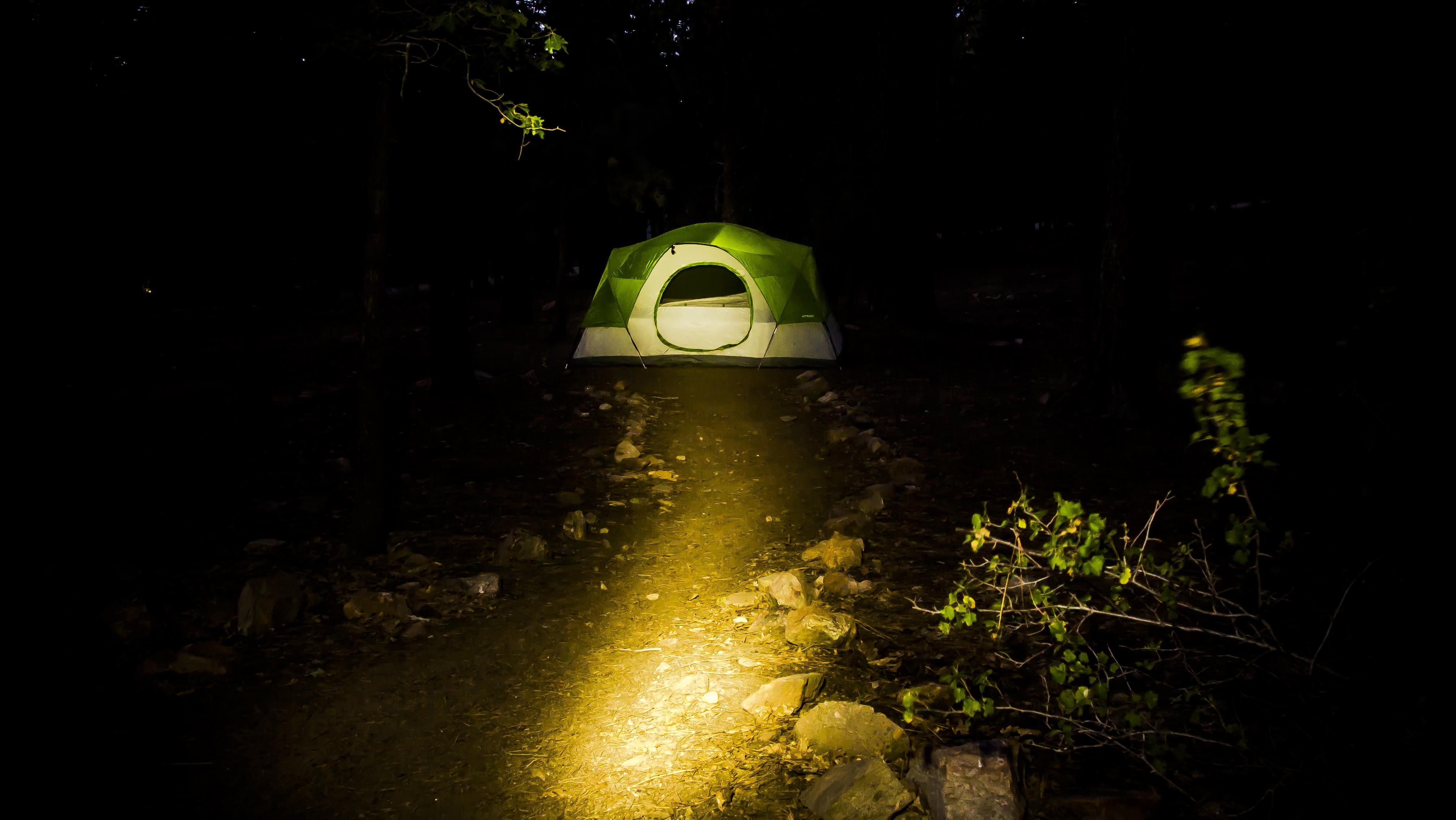 ... sunlight dark bear green reflection darkness street light yellow c&ing lighting tent long creativecommons scary shadows exposure san ... & Free Images : forest night sunlight dark bear green ...