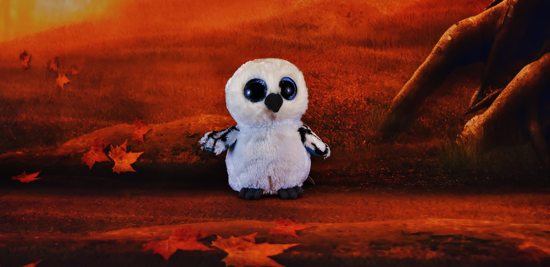 Gambar Owl Untuk Wallpaper Bilik Wallpaper