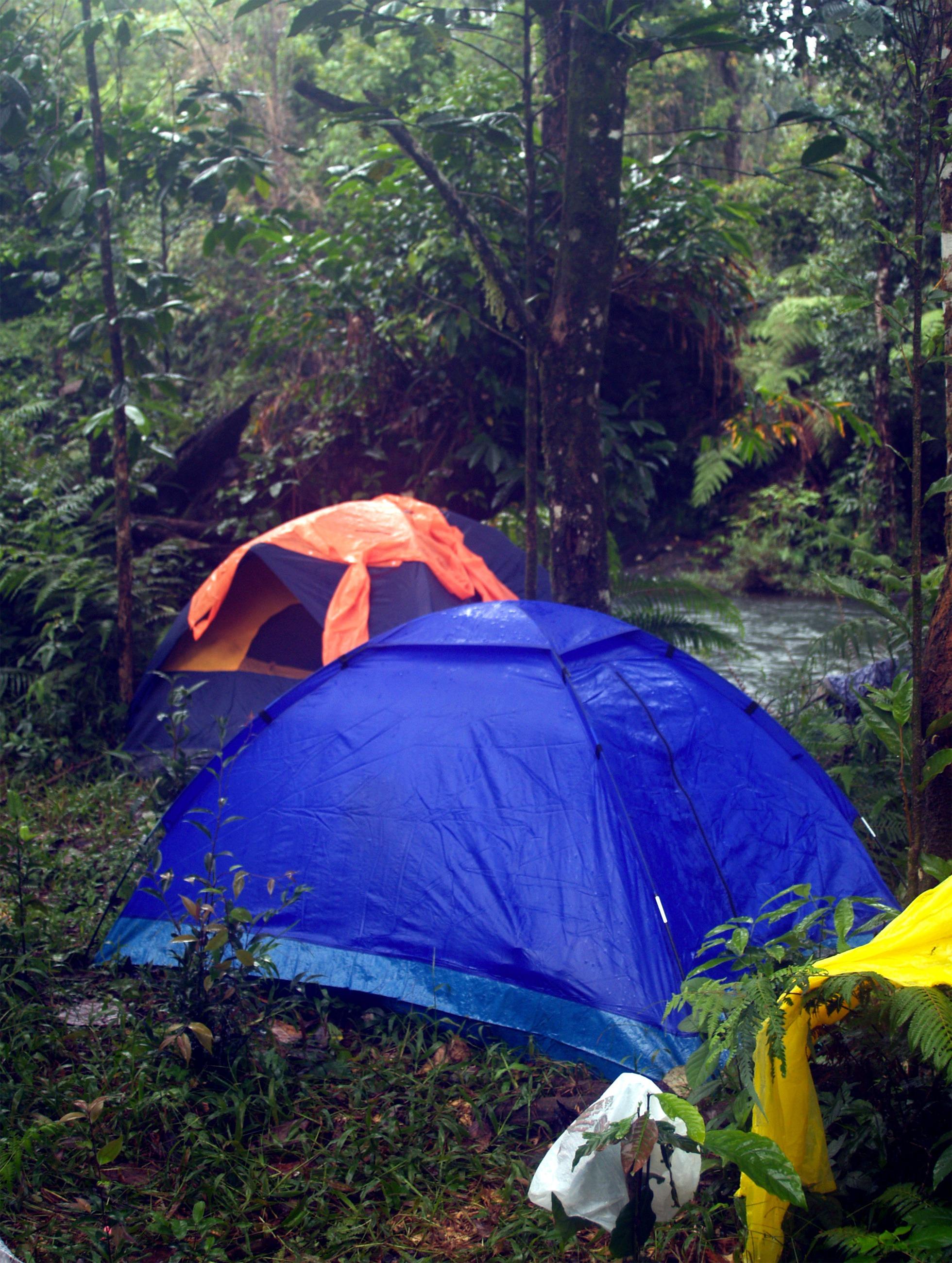 Gambar : hutan, gurun, petualangan, rimba, berkemah, tenda