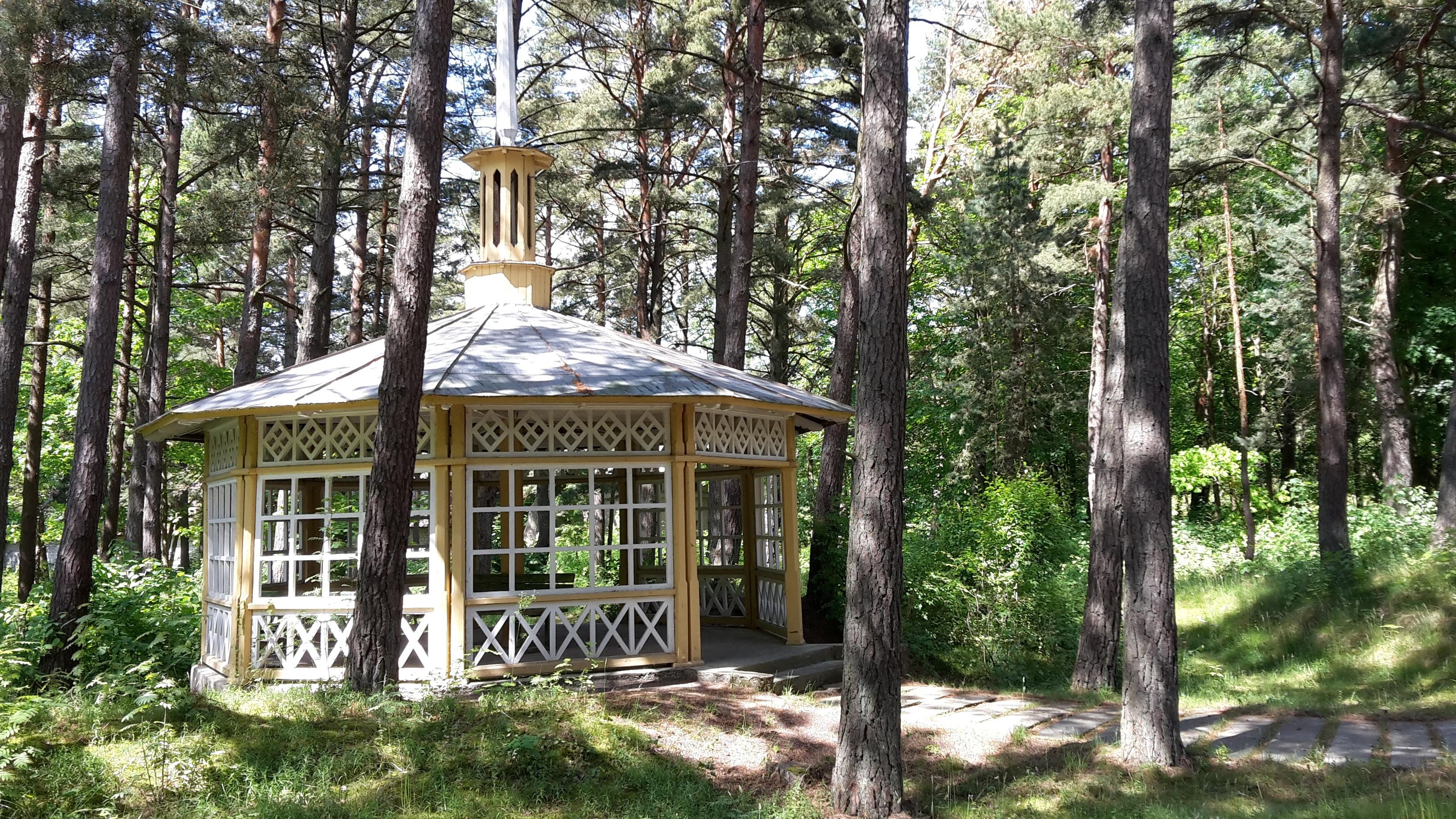 Immobilien Litauen kostenlose foto wald wildnis zuhause hütte kiefer dschungel