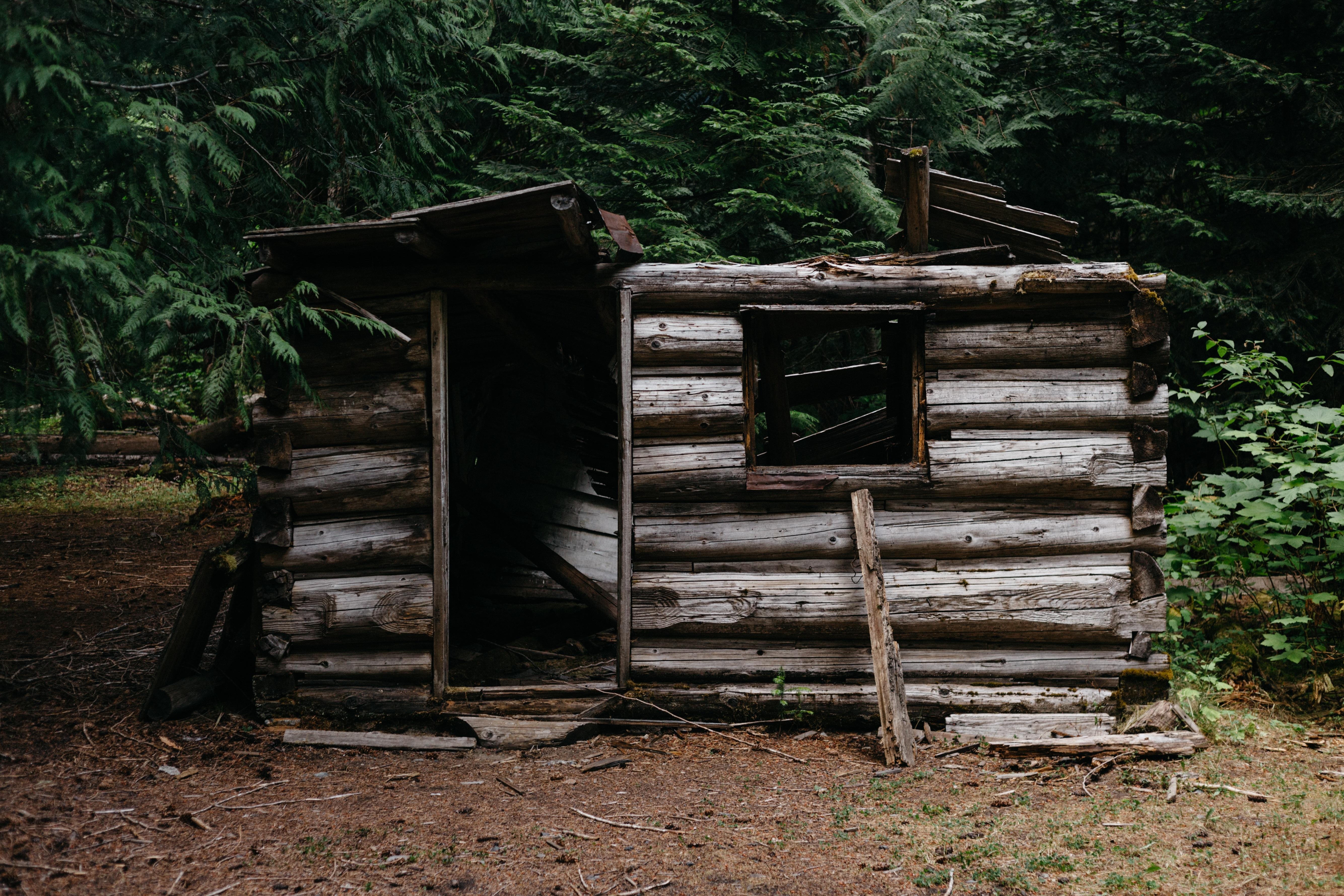 Kostenlose foto : Wald, Holz, Gebäude, Zuhause, Schuppen, Hütte ...